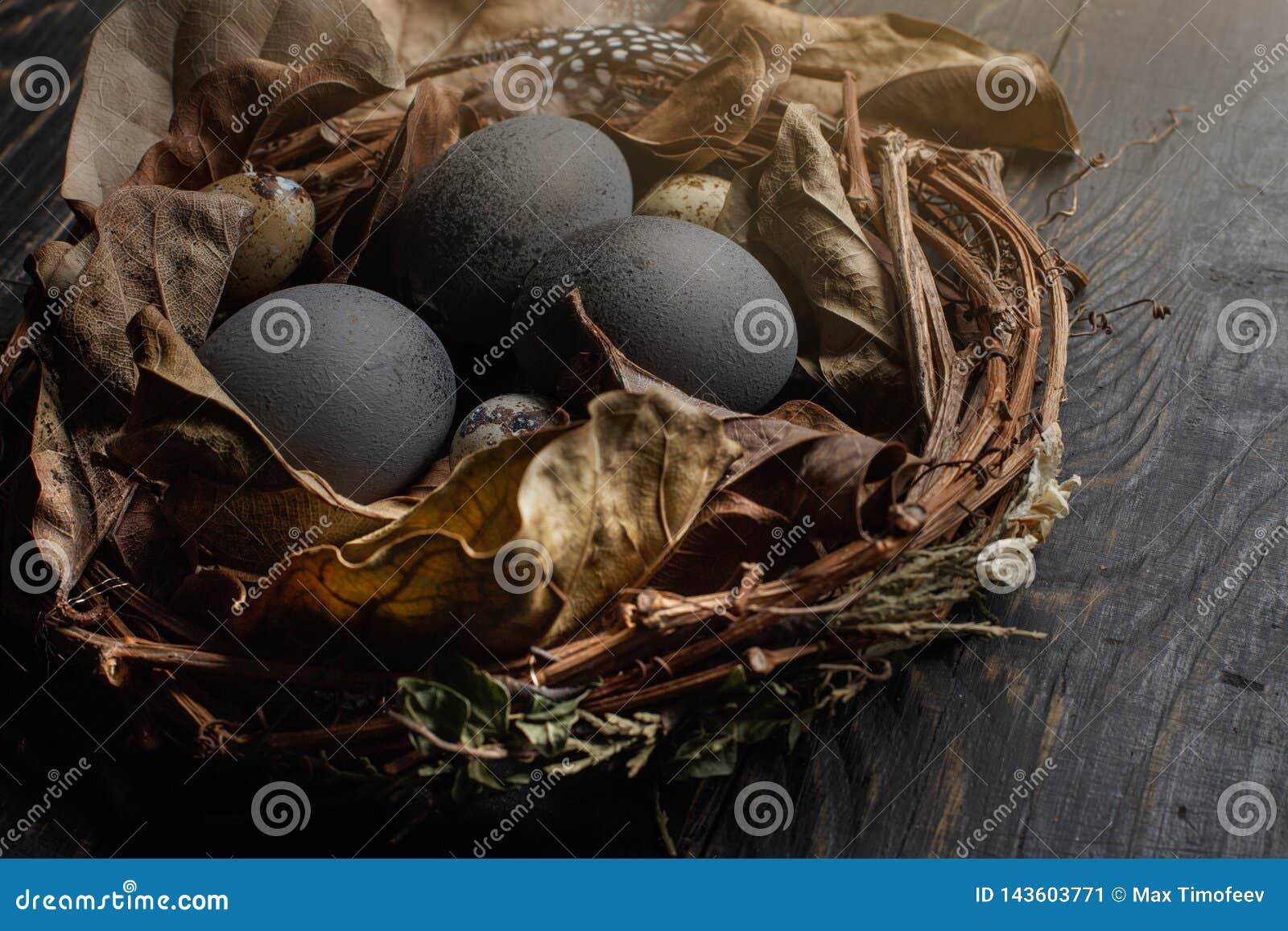 Μαύρα αυγά σε μια φωλιά των ξηρών κλάδων σε έναν μαύρο πίνακα Ύφος Πάσχας