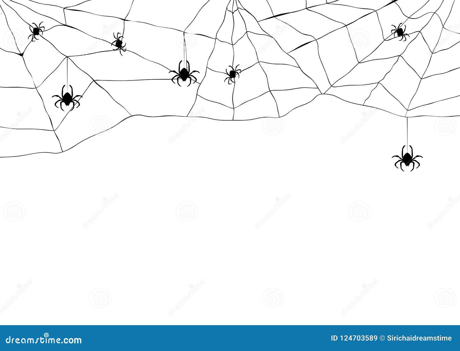 Μαύρη αράχνη και σχισμένος Ιστός Τρομακτικό spiderweb του συμβόλου αποκριών Απομονωμένος στο λευκό