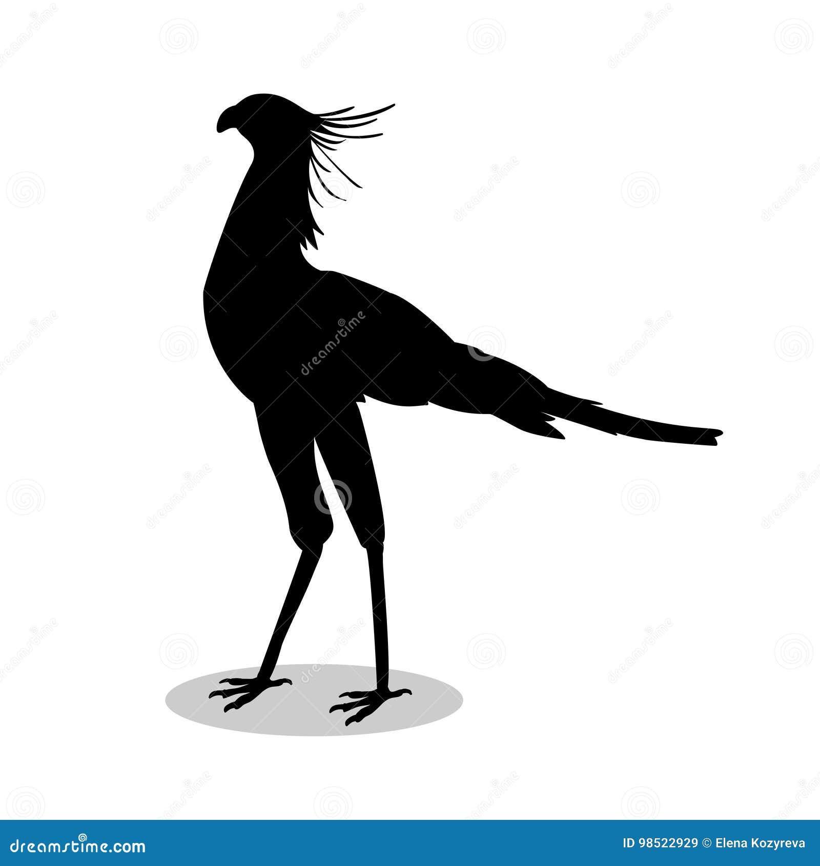 μεγάλο μαύρο πουλί κινούμενα σχέδιαμεγάλο μαύρο στρόφιγγες δωρεάν φωτογραφίες