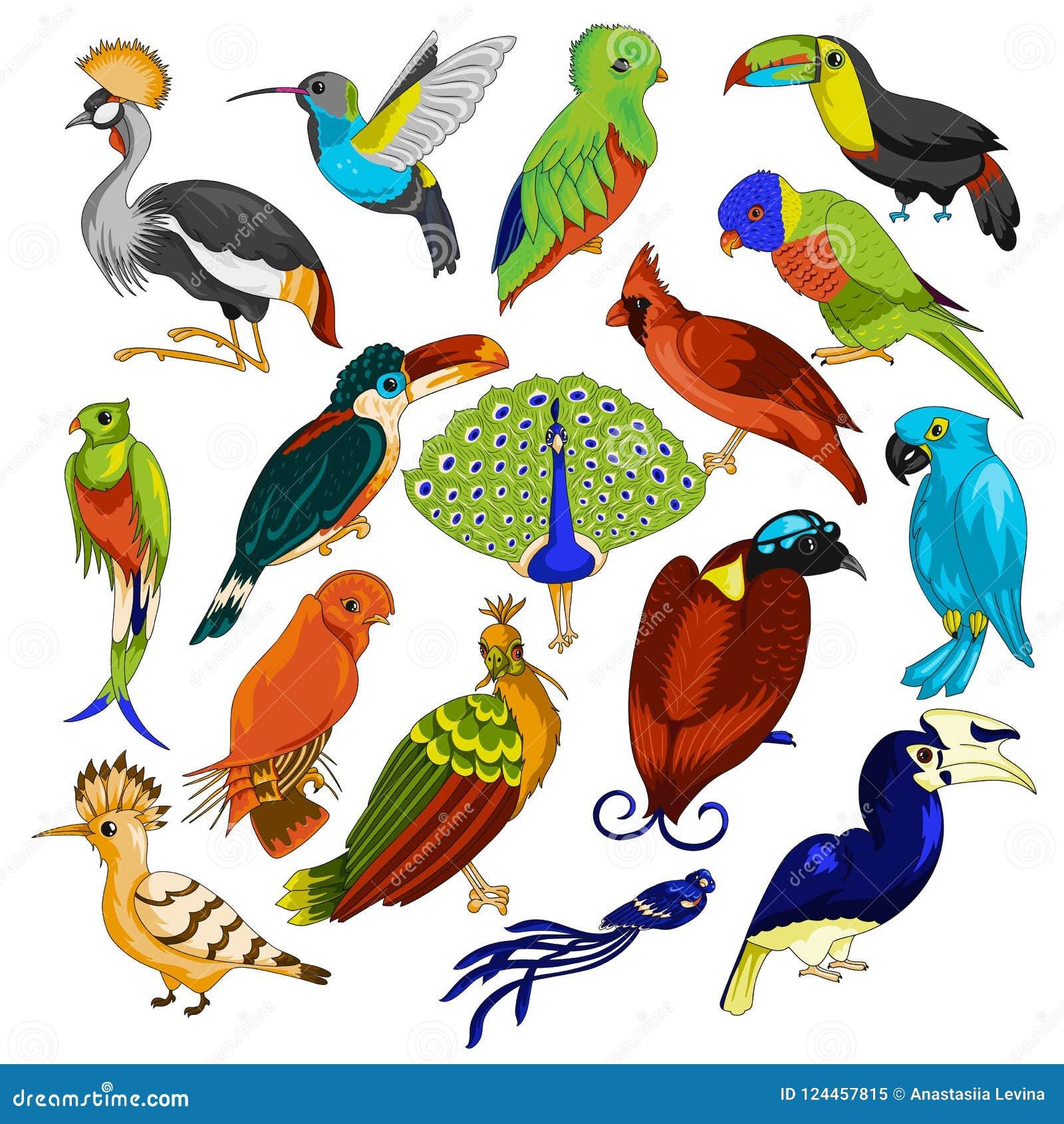 κινούμενα σχέδια μεγάλο πουλί ελεύθερα Ασιάτης/ισσα BBW πορνό βίντεο