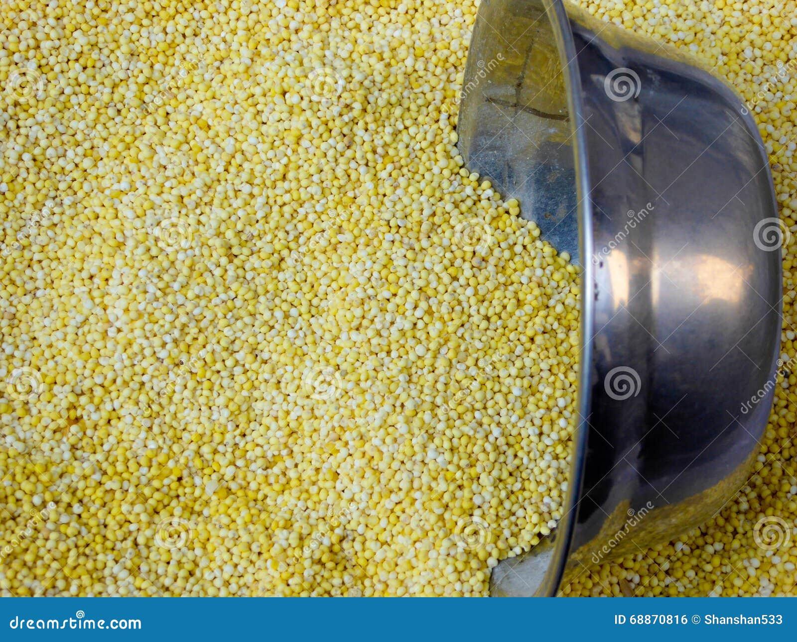 Μεγάλο κίτρινο ρύζι