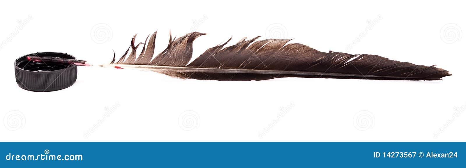 μελάνι φτερών