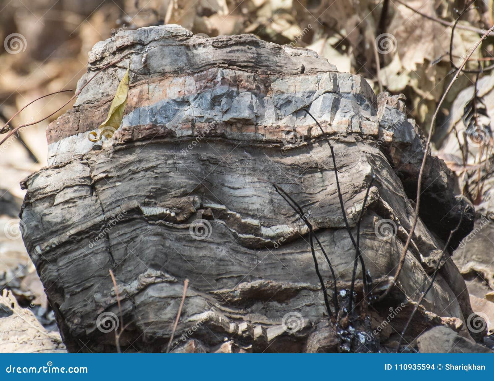 Μεταμορφικός βράχος με τις ζώνες