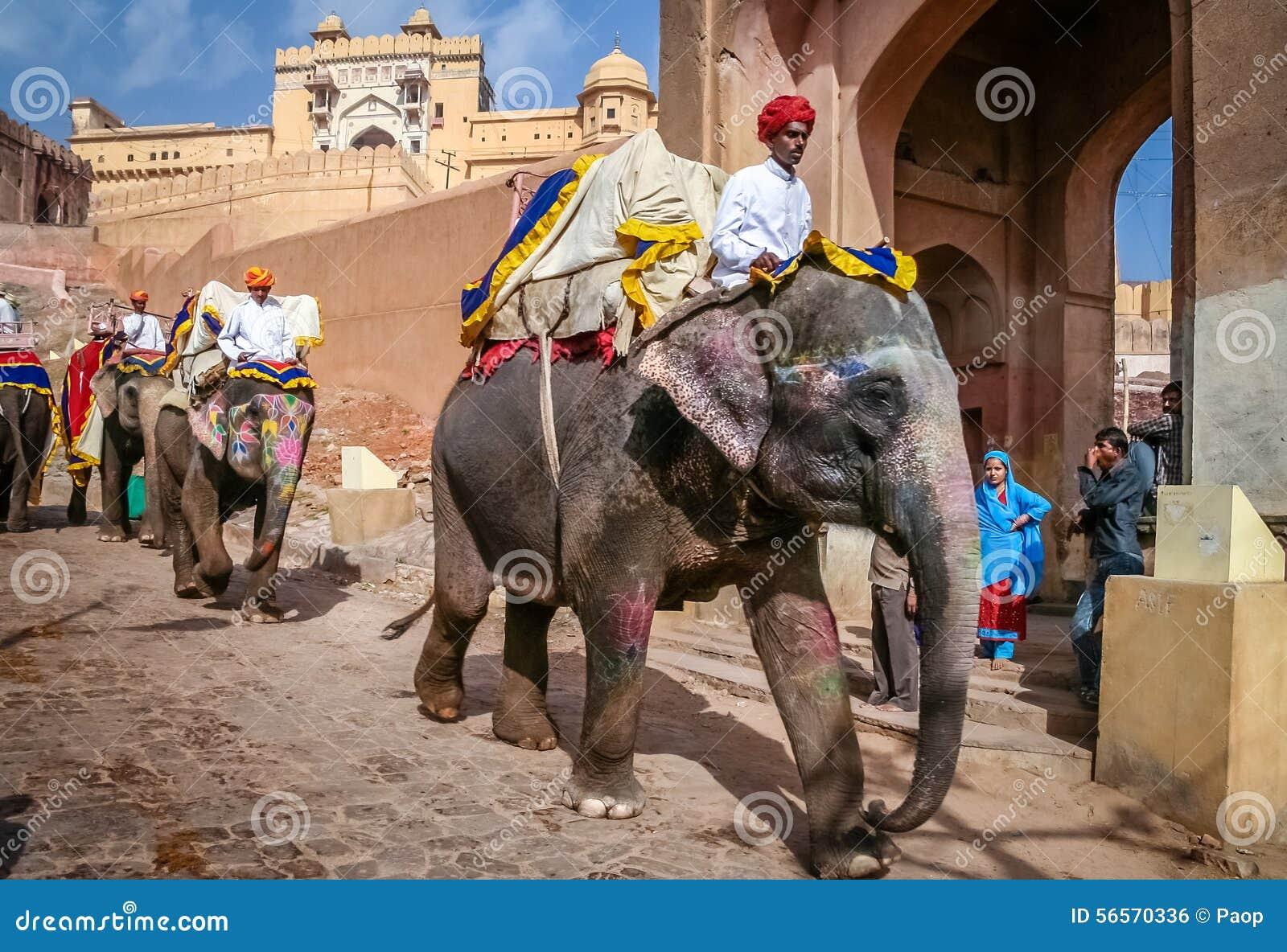Download Μεταφορά ελεφάντων εκδοτική εικόνες. εικόνα από παλαιός - 56570336