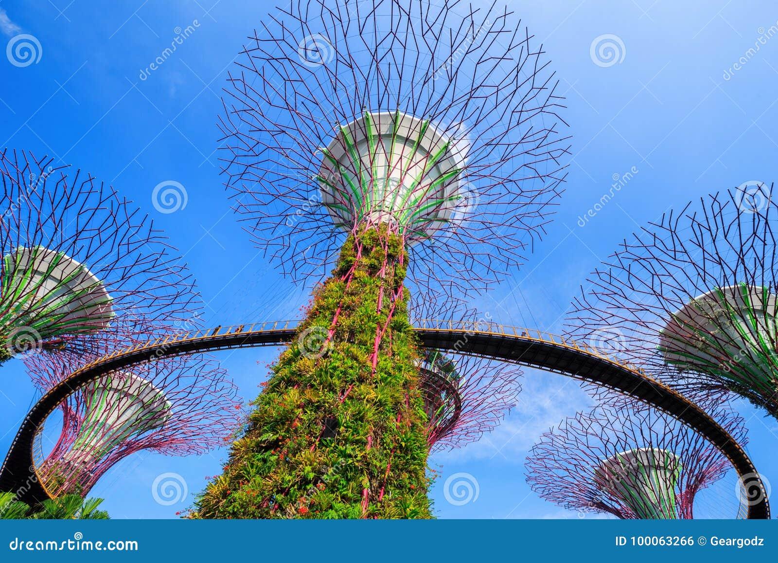 Μη αναγνωρισμένος τουρίστας που επισκέπτεται skyway των κήπων από τον κόλπο στην αμαρτία