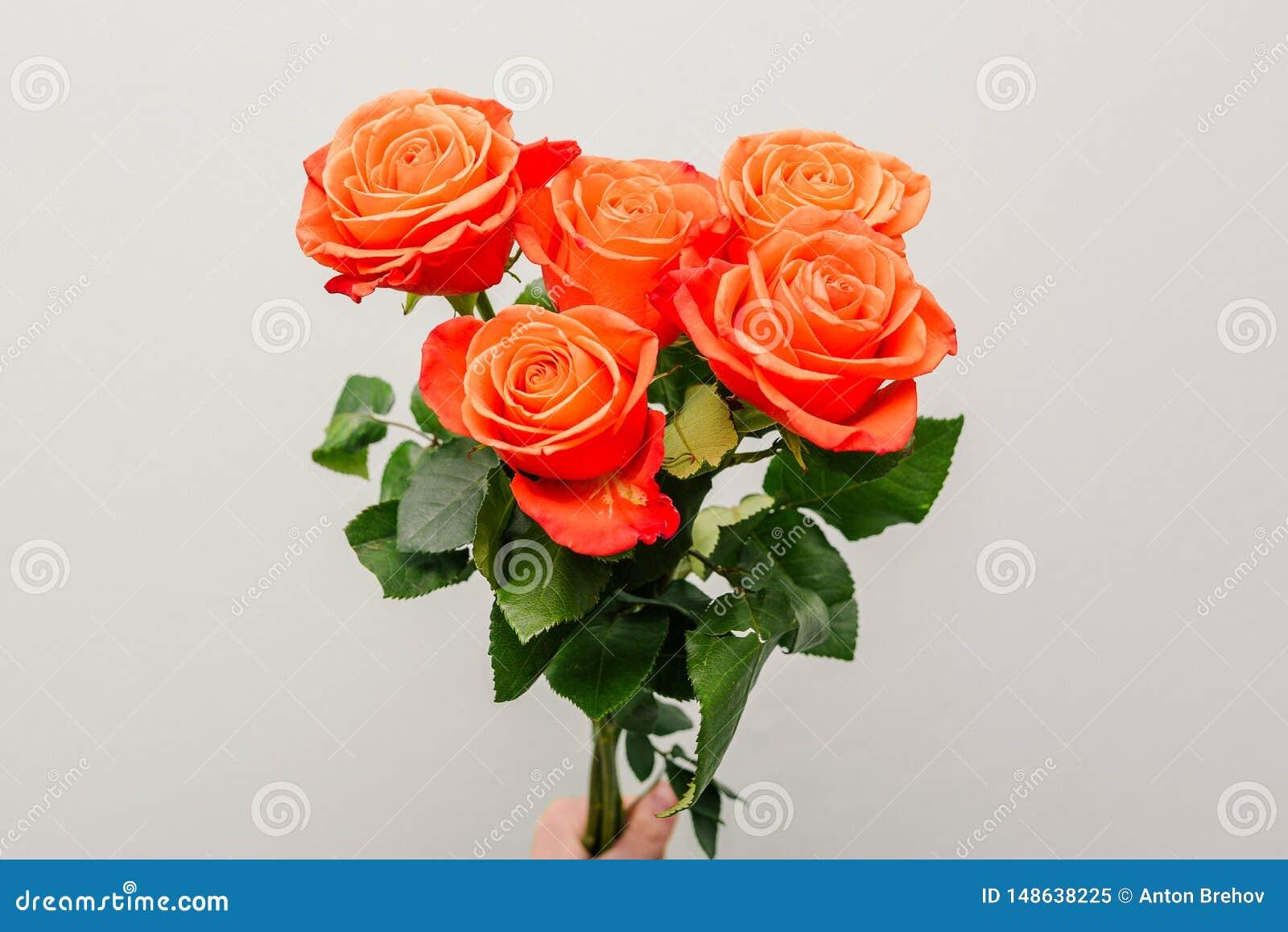Μια ανθοδέσμη των φωτεινών λουλουδιών Φρέσκα ζωηρόχρωμα τριαντάφυλλα στο χέρι του κοριτσιού Κινηματογράφηση σε πρώτο πλάνο των λο