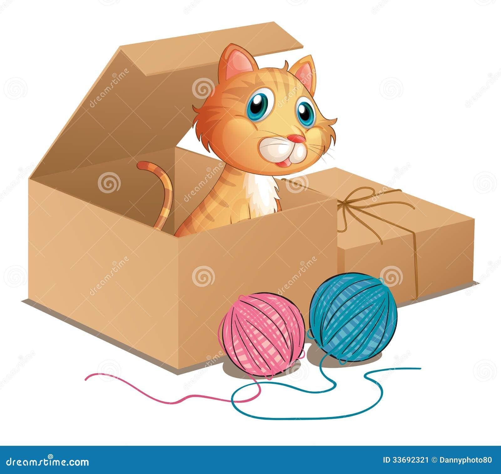 Μια γάτα μέσα στο κιβώτιο