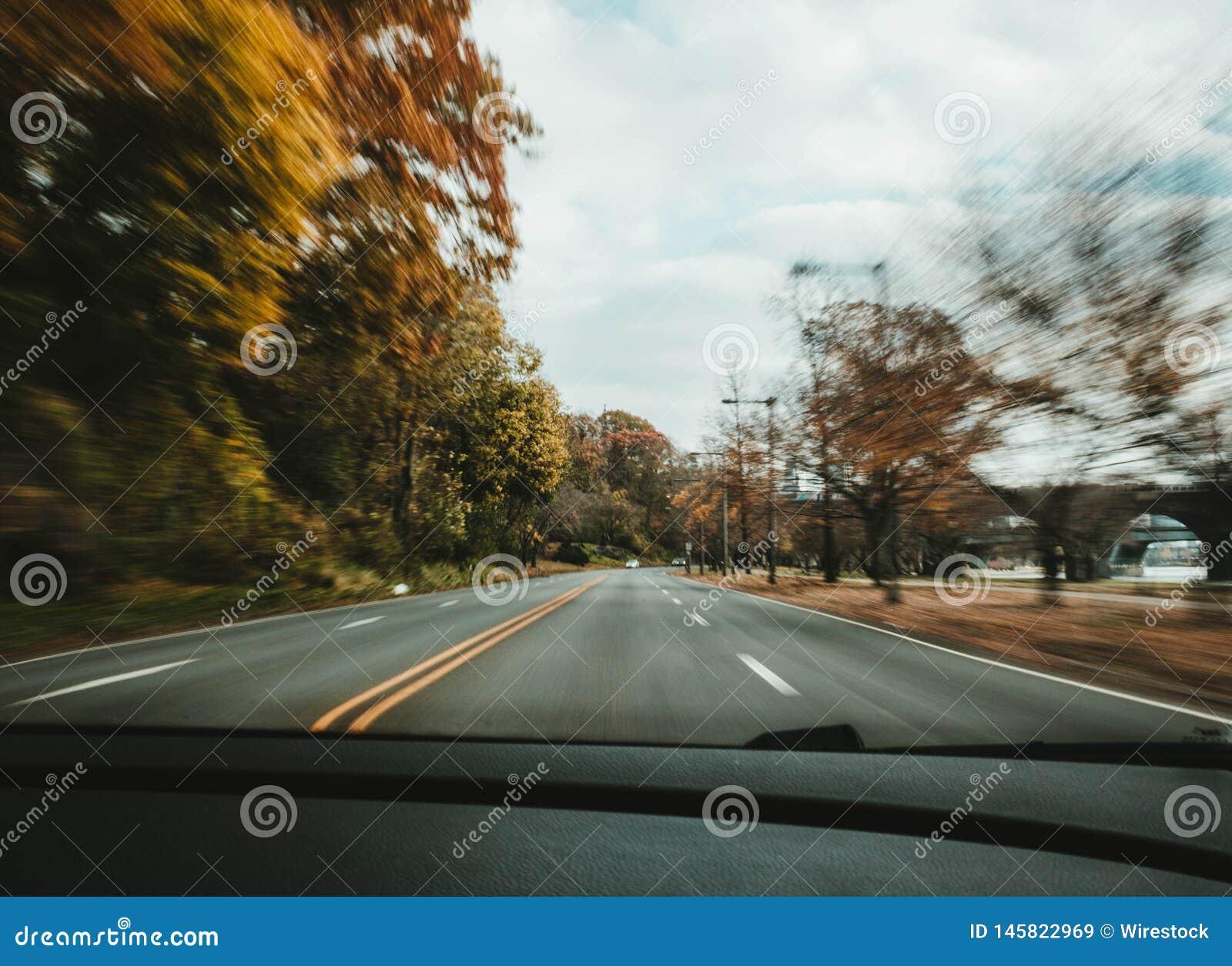 Μια γρήγορη μετακίνηση αυτοκινήτων στο δρόμο με τα δέντρα