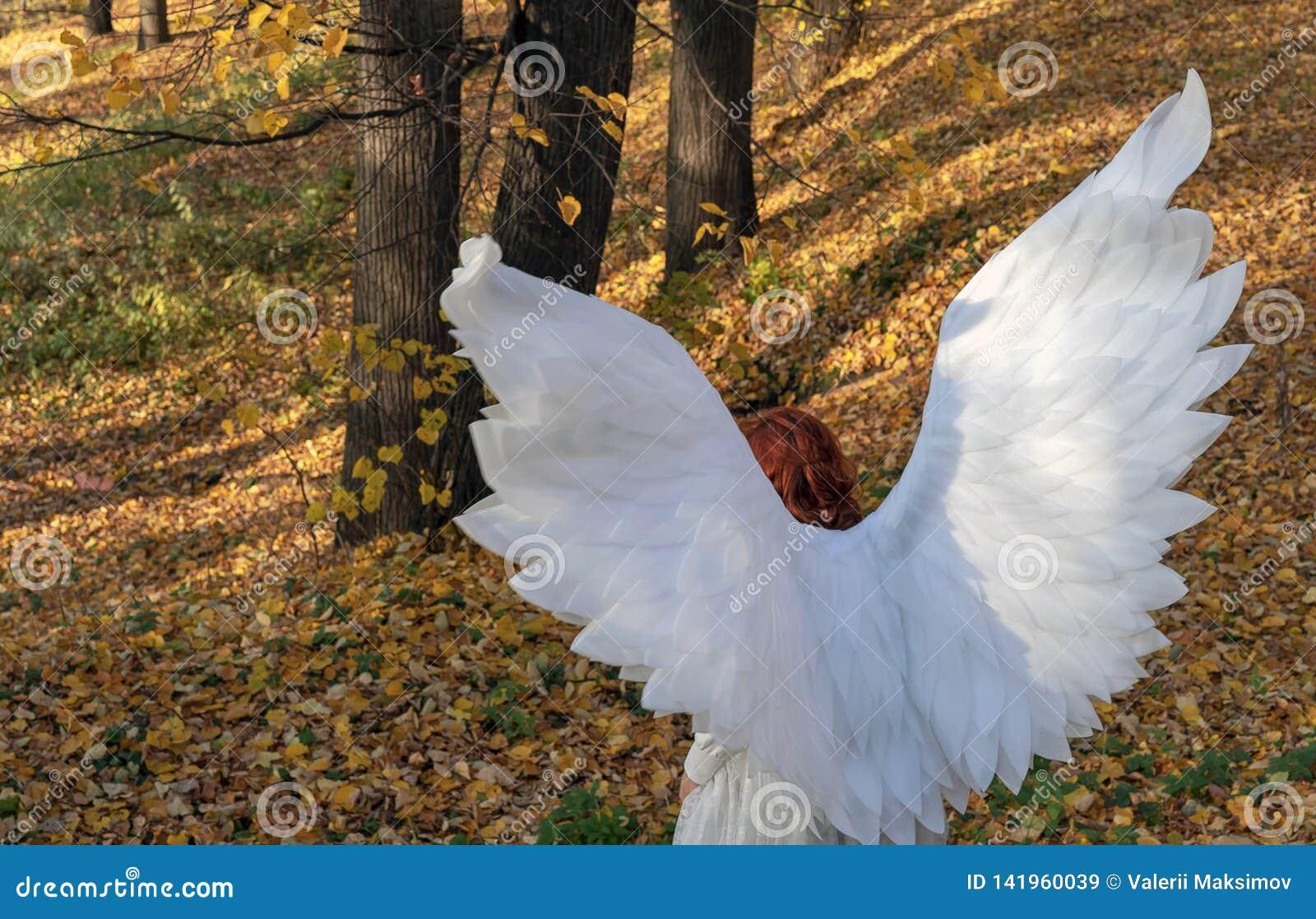 Μια γυναίκα σε ένα άσπρο κοστούμι αγγέλου σε ένα υπόβαθρο του τοπίου φθινοπώρου