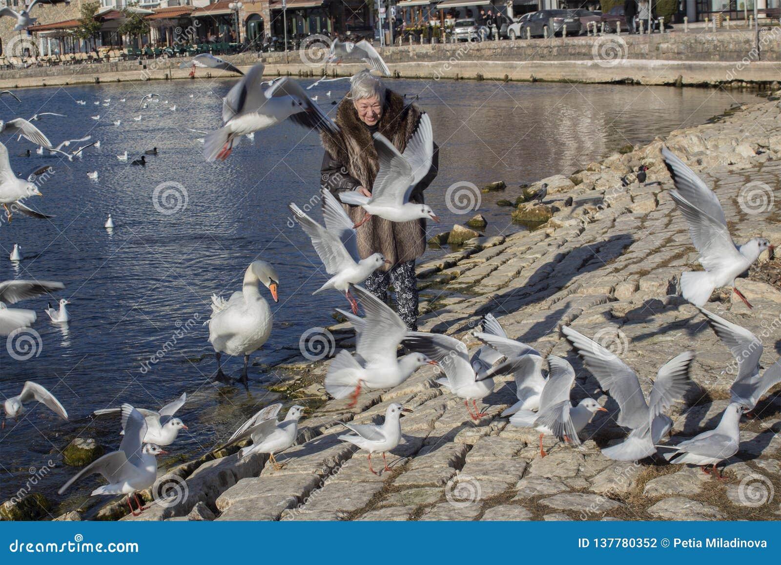 Μια ευτυχής 83χρονη κυρία με τα πουλιά στο λιμένα της λίμνης της Οχρίδας, Μακεδονία