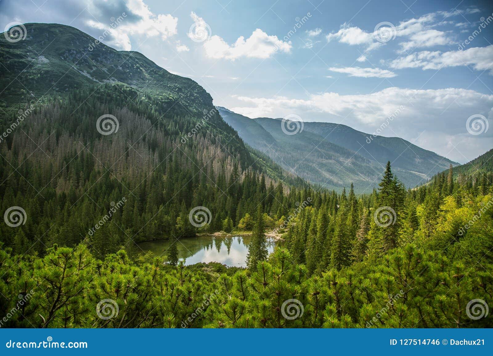 Μια όμορφη, καθαρή λίμνη στην κοιλάδα βουνών στην ήρεμη, ηλιόλουστη ημέρα Τοπίο βουνών με το νερό το καλοκαίρι
