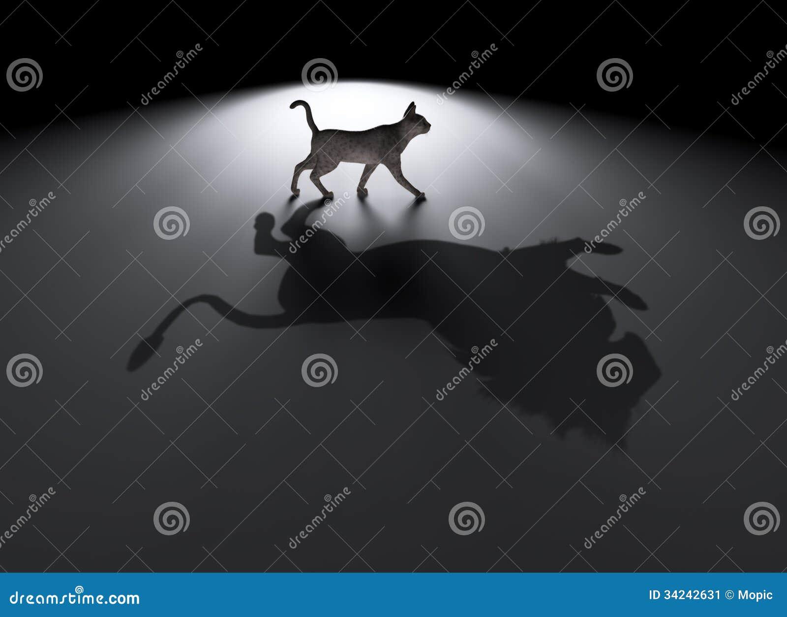 Μικρή γάτα με ένα μεγάλο όνειρο