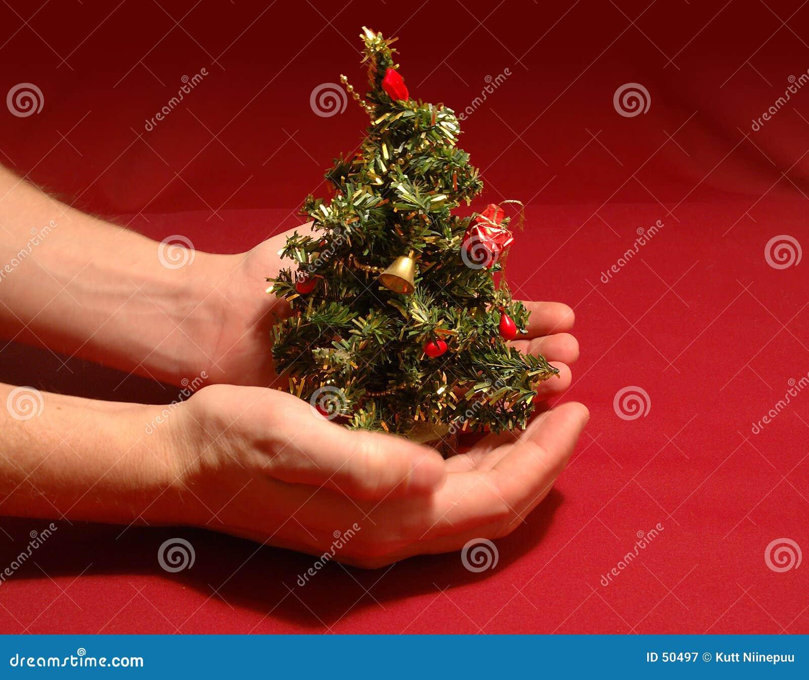 μικροσκοπικό δέντρο Χριστουγέννων