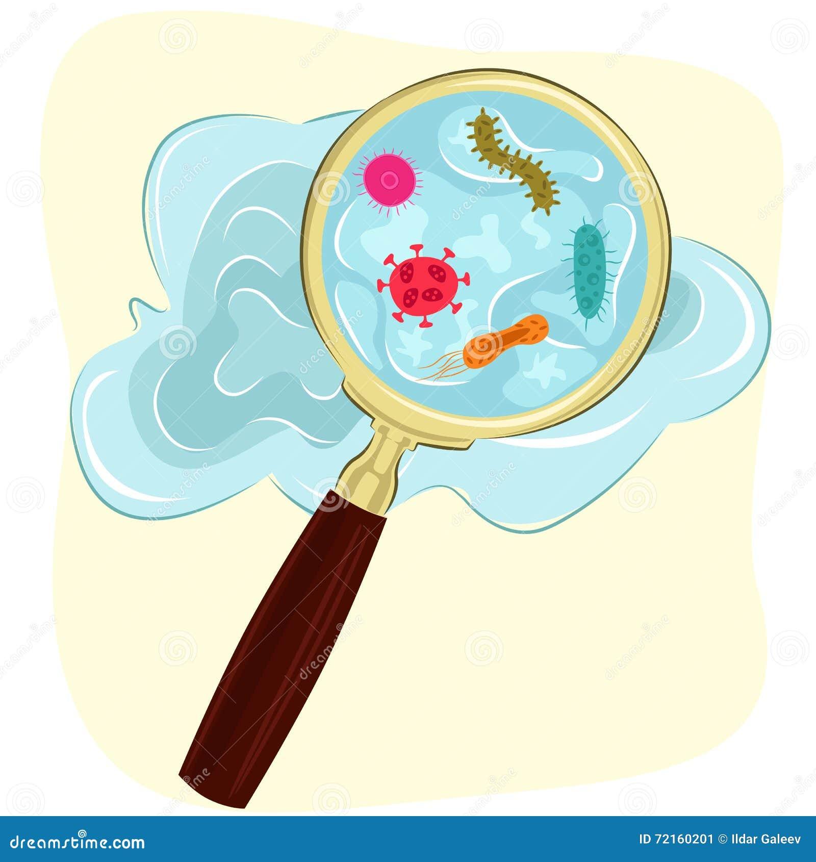Μικρόβια, βακτηρίδια και κύτταρα ιών στο νερό κάτω από μια ενίσχυση - γυαλί