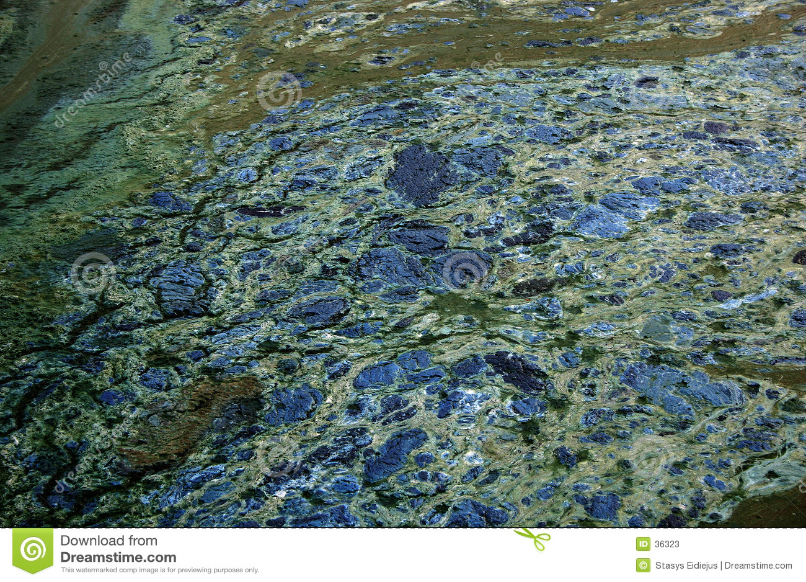 μολυμένο ύδωρ σύστασης