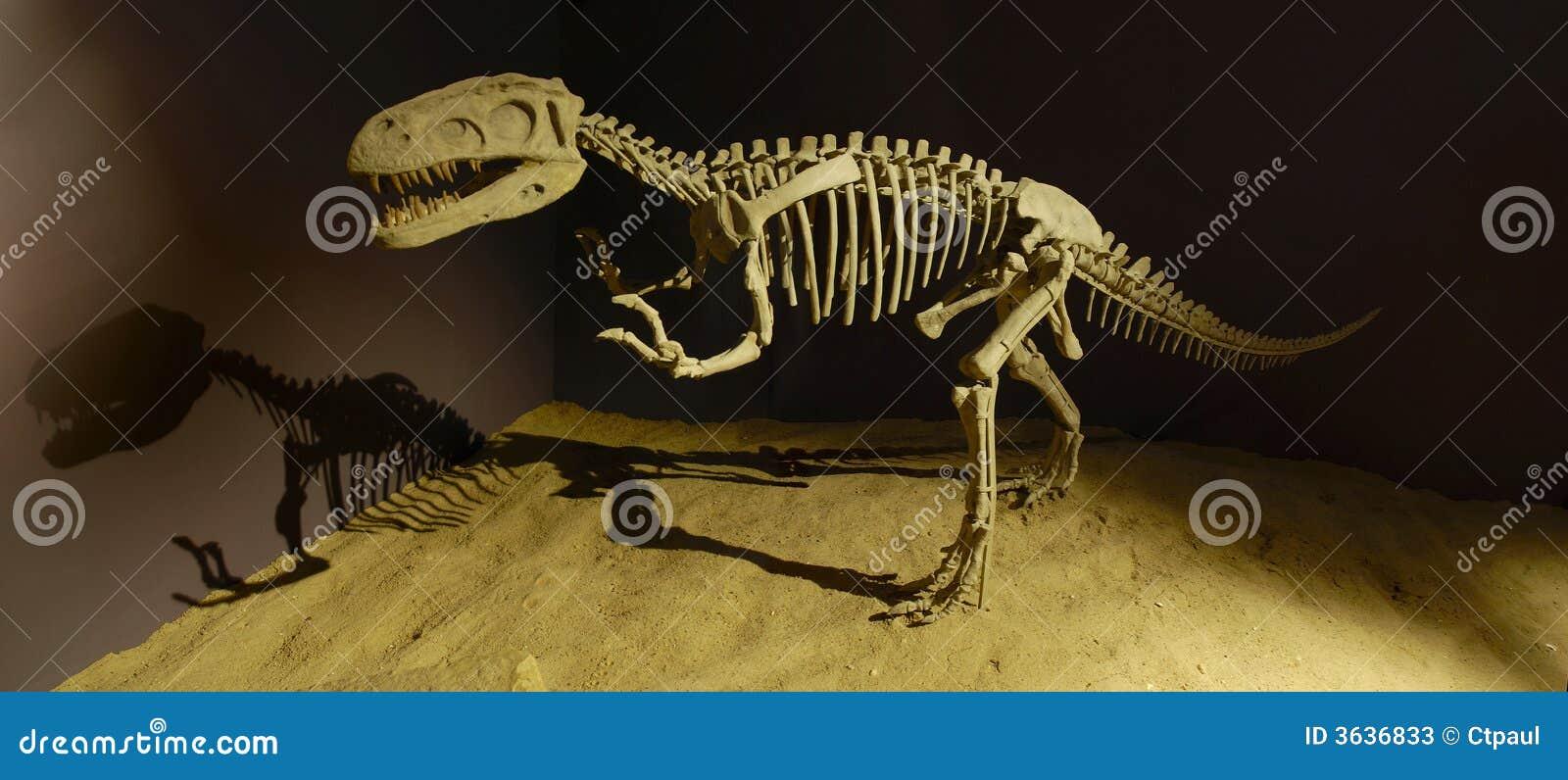 μουσείο δεινοσαύρων
