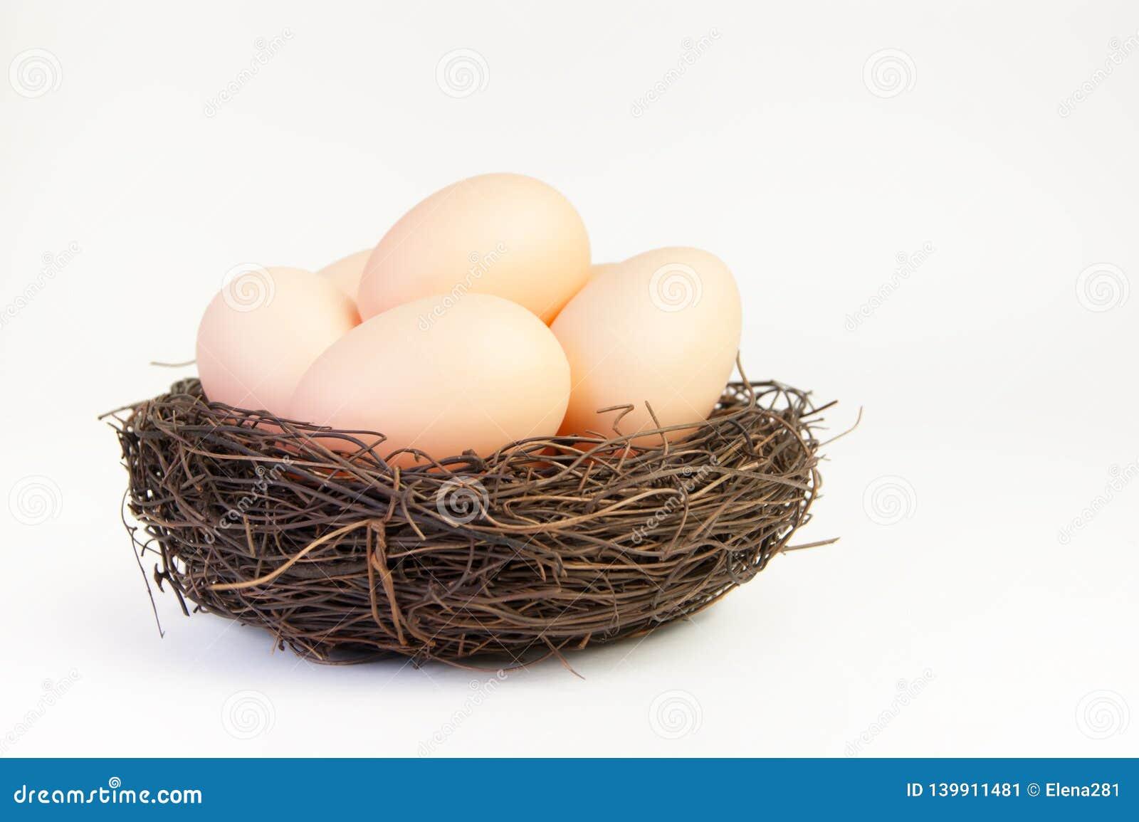 Μπεζ αυγά στη φωλιά των κλάδων