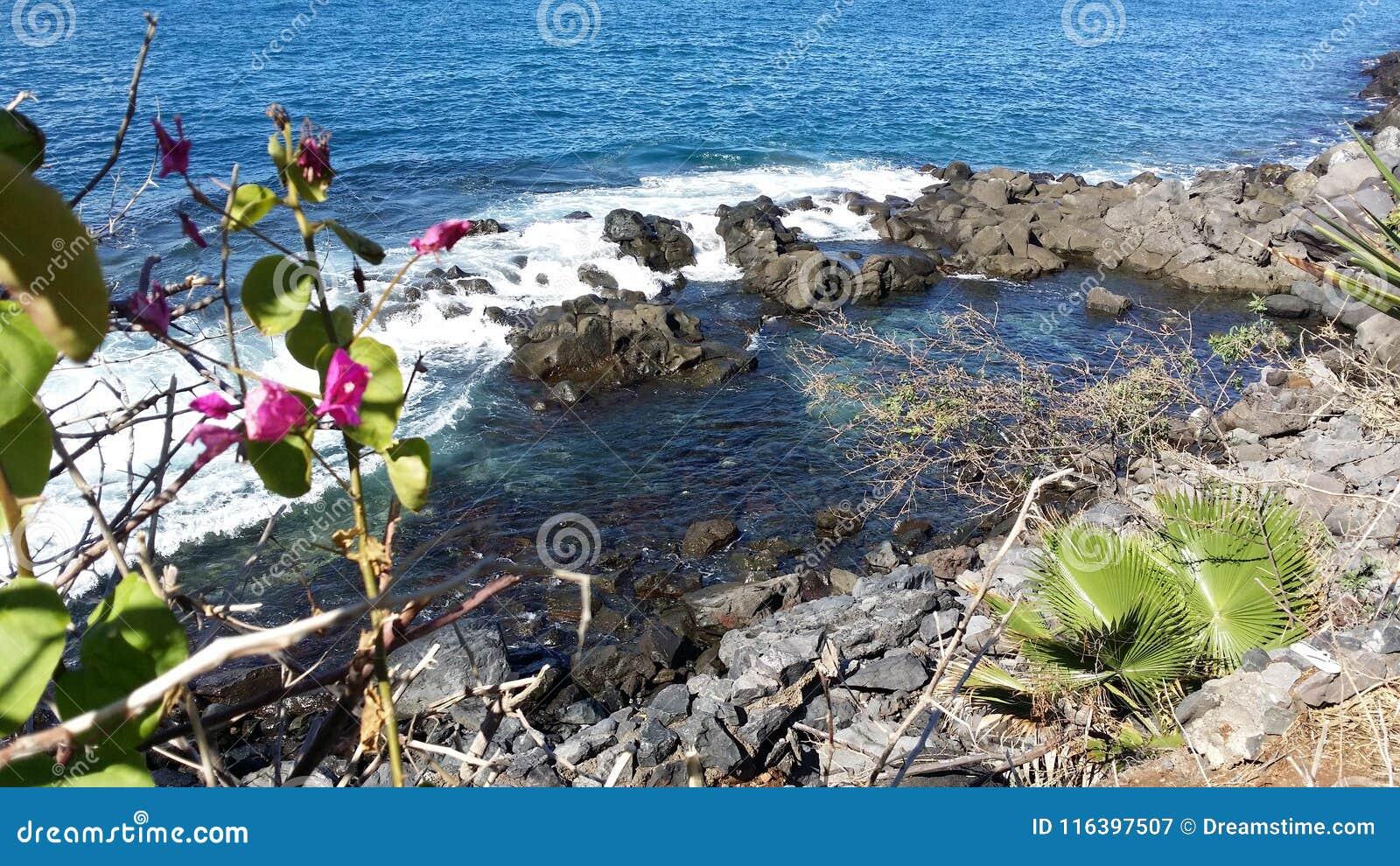 Μπλε ακτή Tenerife, Adeje Ισπανία