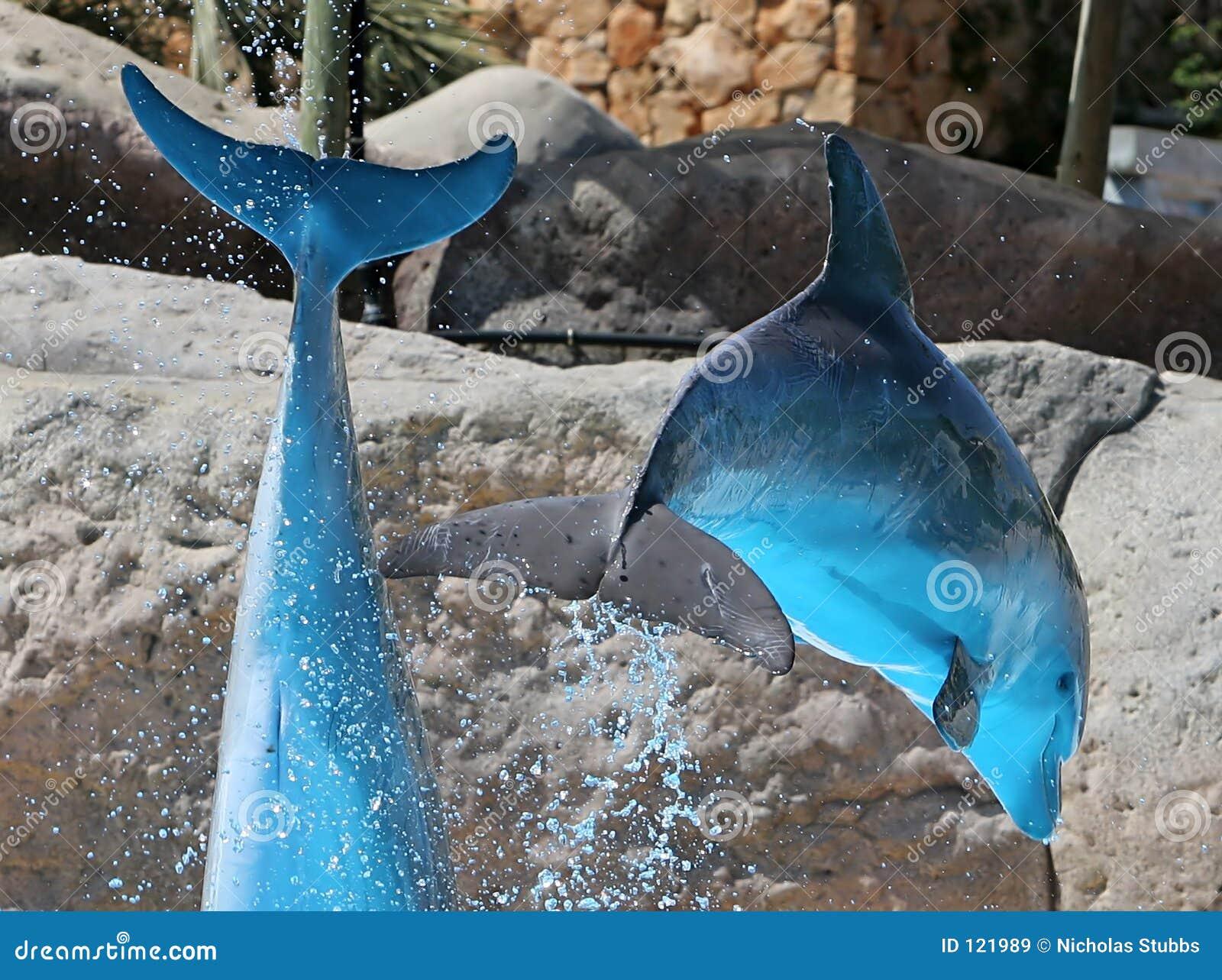 μπλε πήδημα δελφινιών ημέρα&s