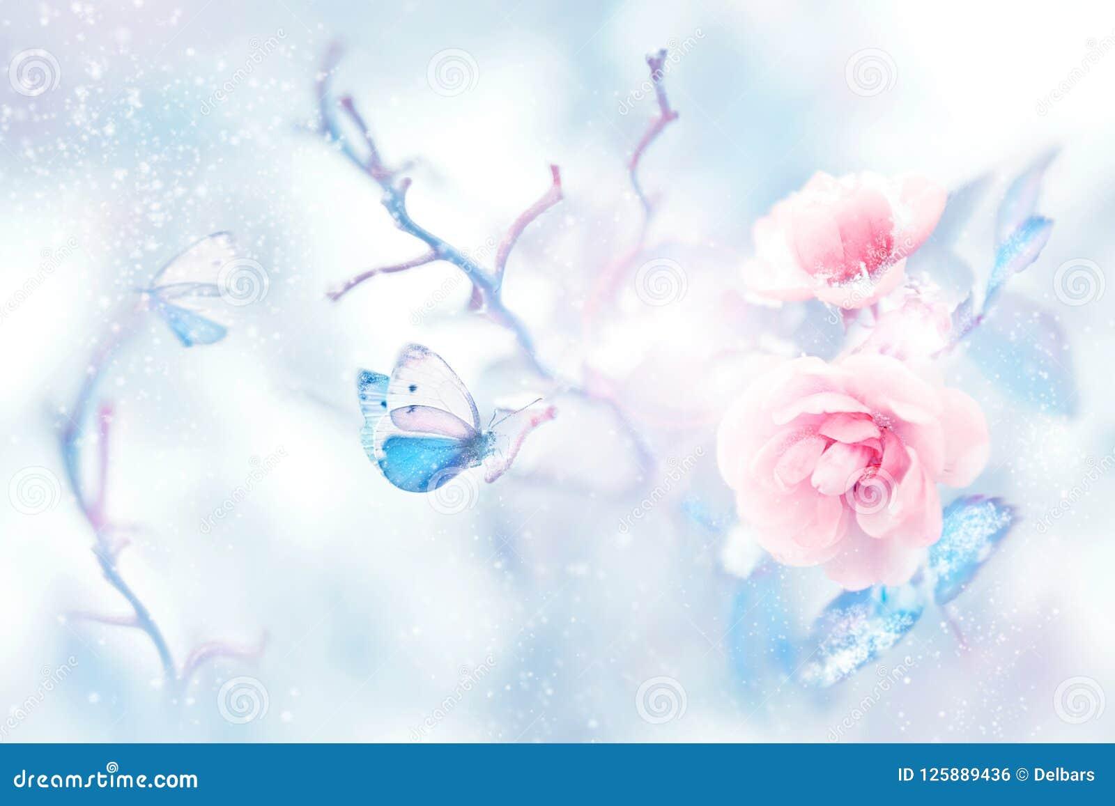 Μπλε πεταλούδα στο χιόνι στα ρόδινα τριαντάφυλλα σε έναν κήπο νεράιδων Καλλιτεχνική εικόνα Χριστουγέννων
