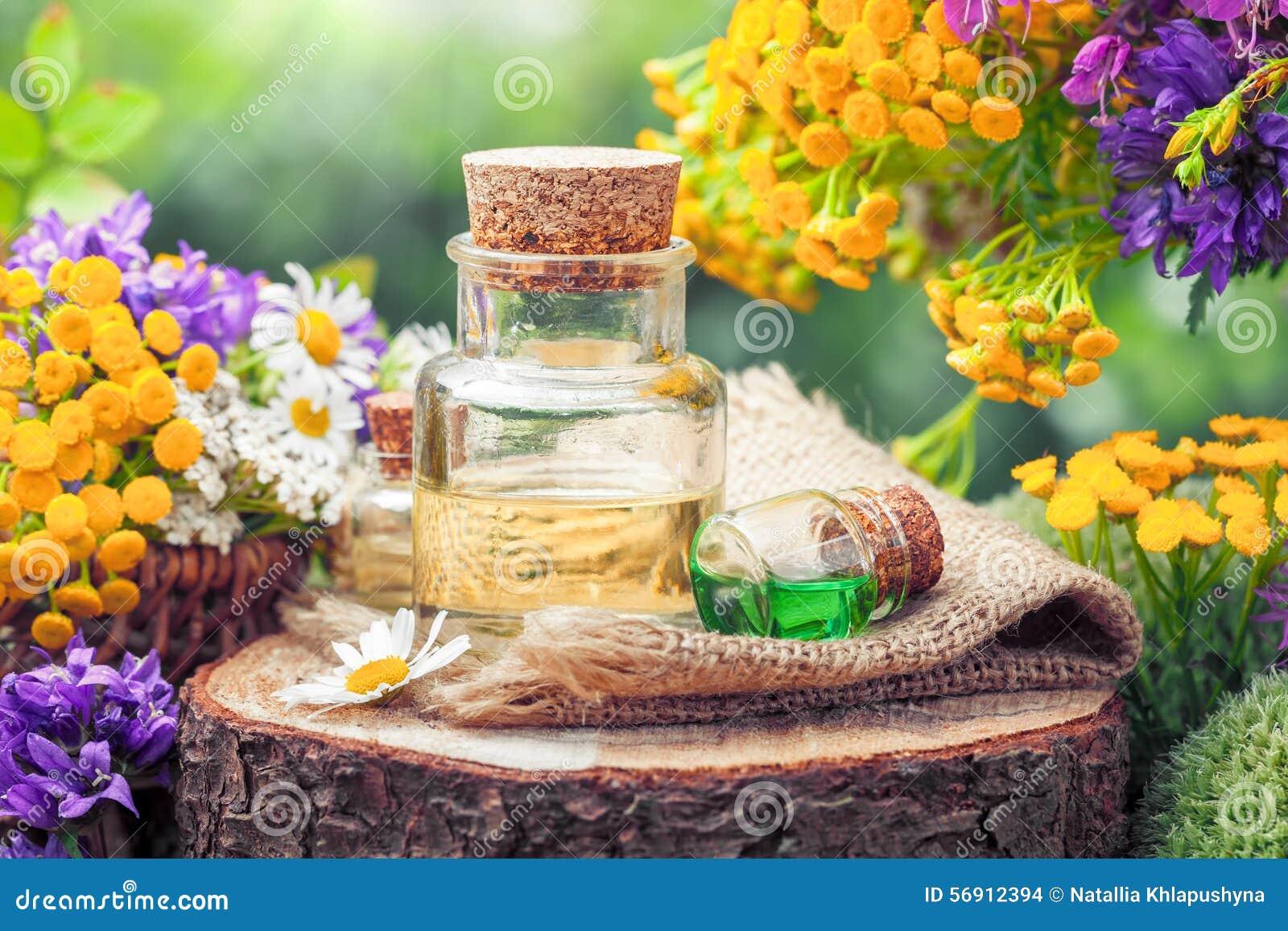 Μπουκάλια του ουσιαστικής ελαίου ή της φίλτρου, των χορταριών θεραπείας και των λουλουδιών