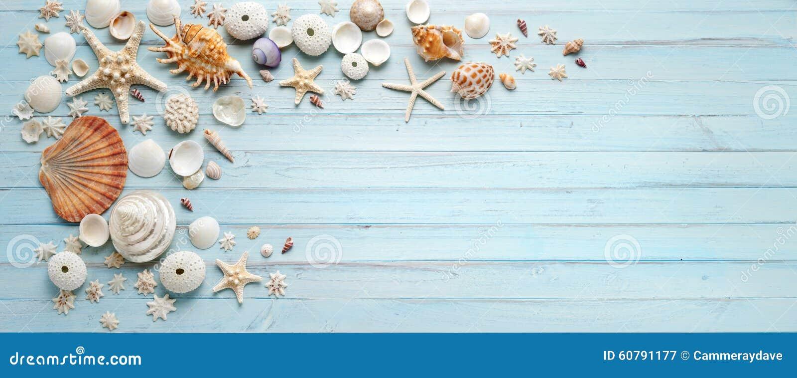 Μπλε ξύλινο υπόβαθρο κοχυλιών εμβλημάτων