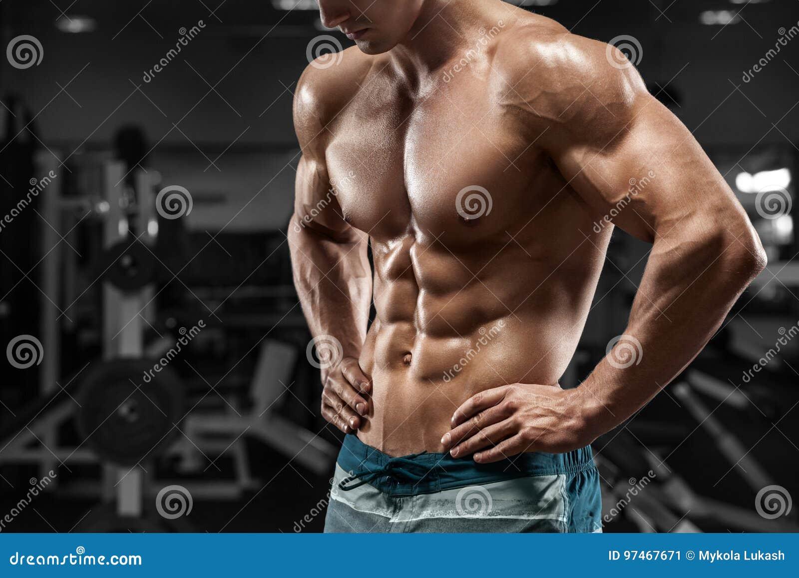 Μυϊκά ABS ατόμων στη γυμναστική, διαμορφωμένος κοιλιακός Ισχυρός αρσενικός γυμνός κορμός, επίλυση
