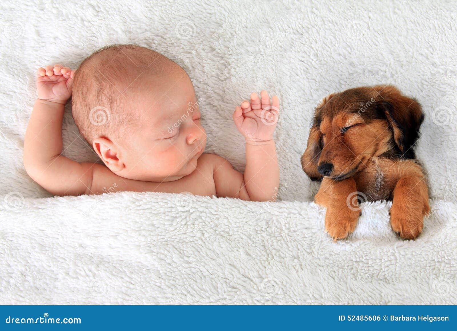Μωρό και κουτάβι ύπνου