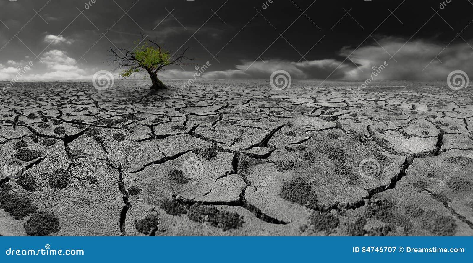 Μόνο δέντρο σε ένα μετα-αποκαλυπτικό τοπίο ερήμων