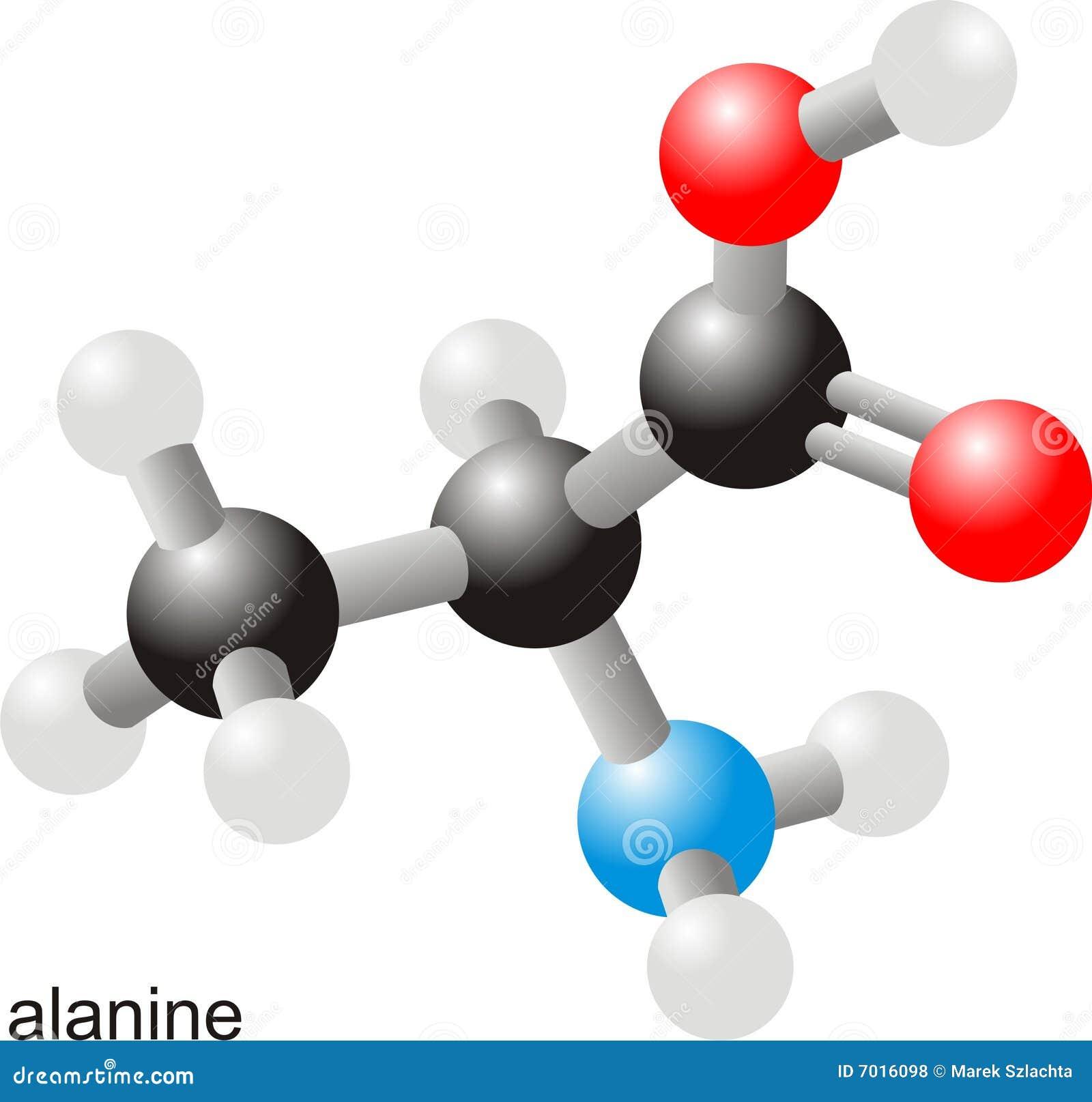 μόριο αλανινών