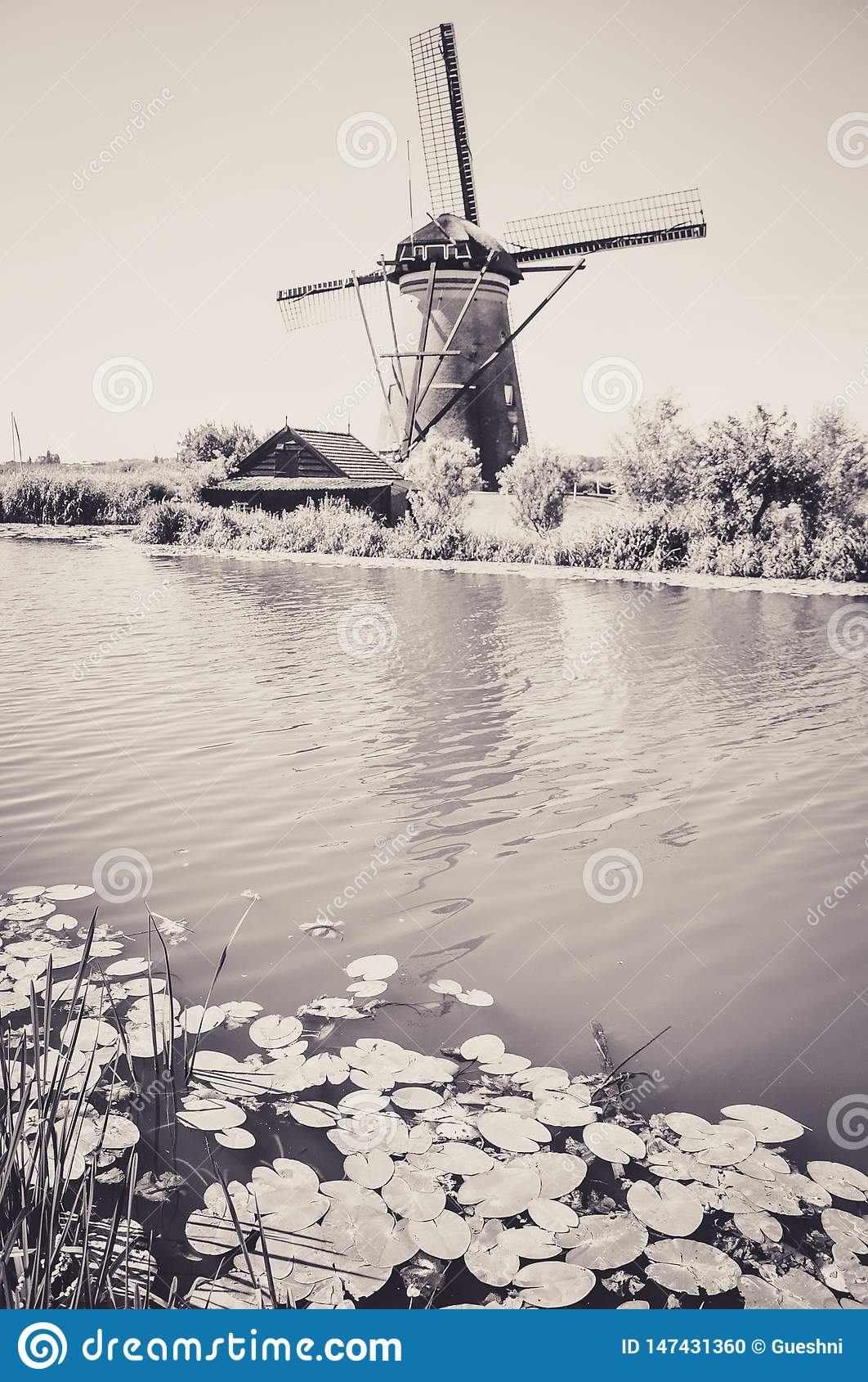 Μύλοι από τον ποταμό σε Kinderdijk