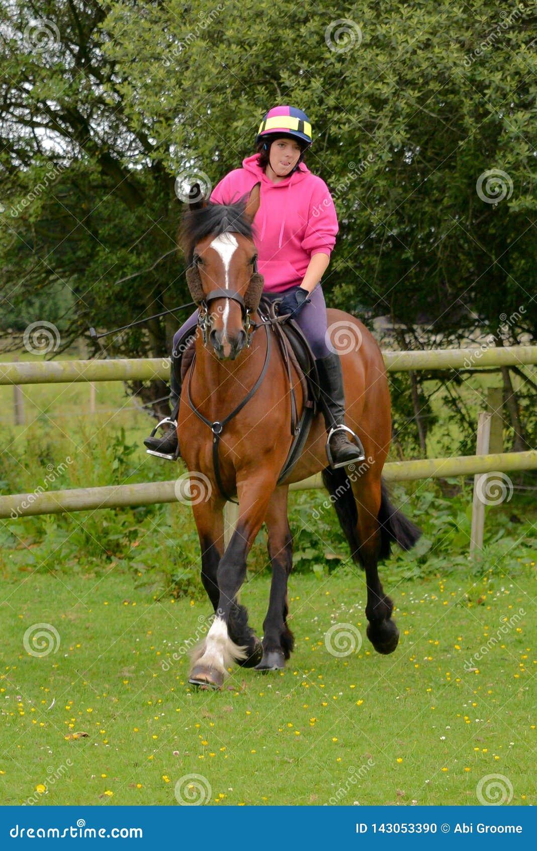 Νέα γυναίκα που οδηγά το άλογό της σε έναν τομέα