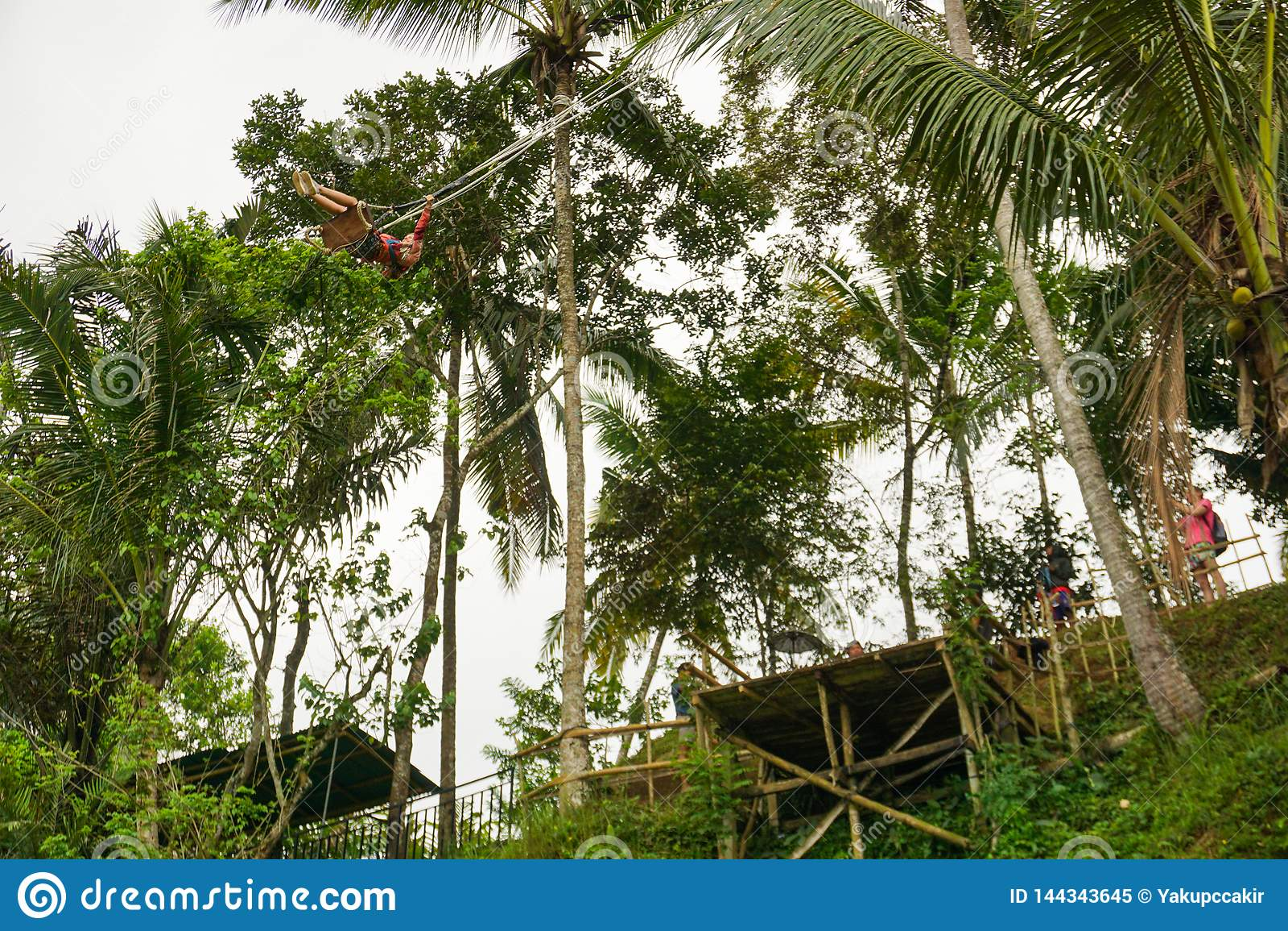 Νέα γυναίκα που ταλαντεύεται στη ζούγκλα κάτω από τους terraced τομείς ρυζιού, Tegallalang, Ubud, Μπαλί, Ινδονησία