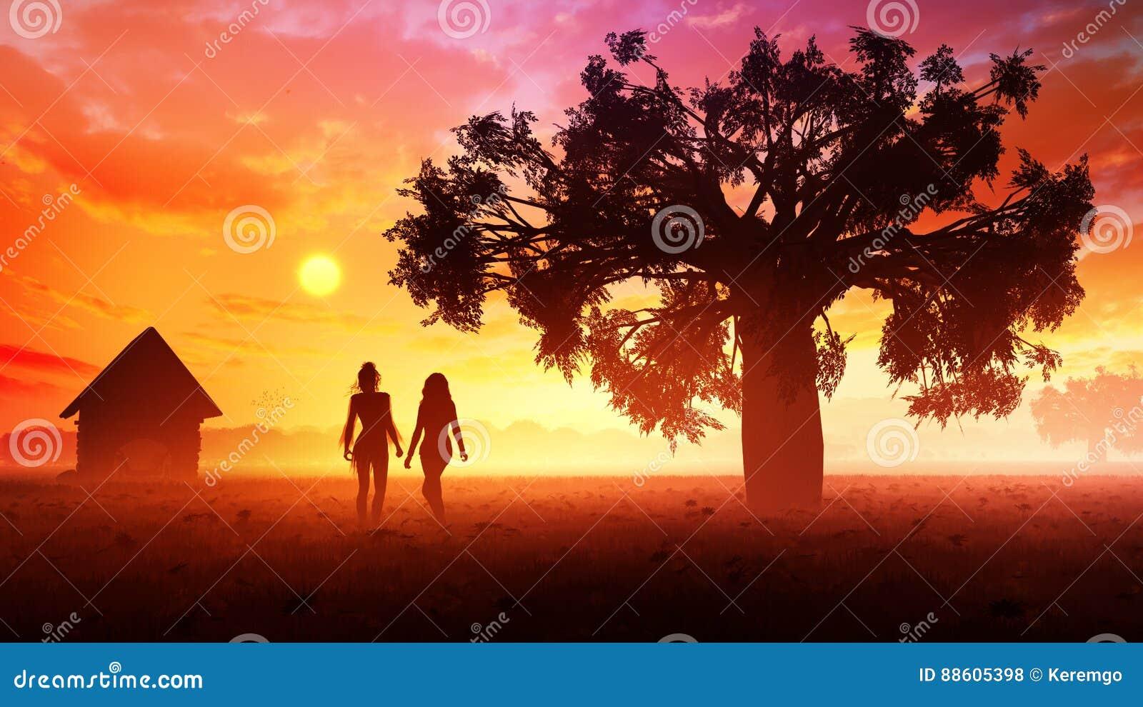 Νέες γυναίκες στο ηλιοβασίλεμα λιβαδιών