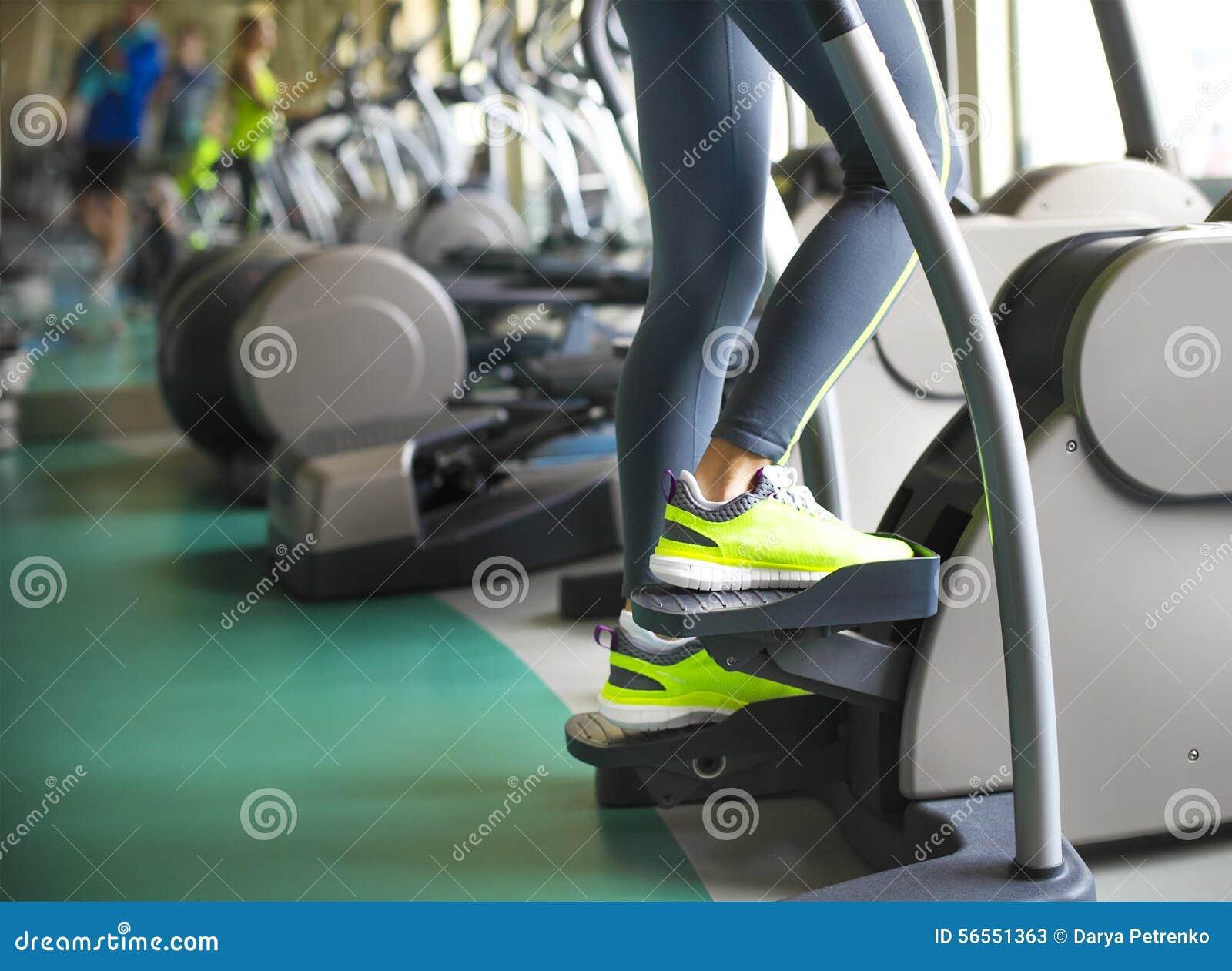 Download Νέες φίλαθλες γυναίκες που κάνουν τις ασκήσεις στο κέντρο γυμναστικής Στοκ Εικόνα - εικόνα από μυϊκός, ανύψωση: 56551363