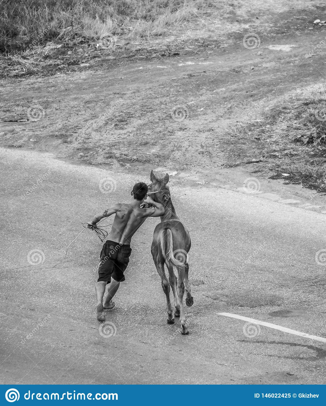 Νέο άλογο με τον εκπαιδευτή του