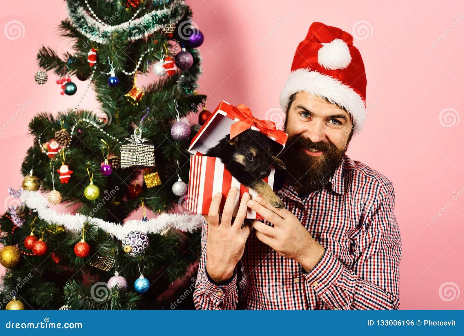 Νέο έτος σκυλιού Ο τύπος με το εύθυμο πρόσωπο ανοίγει το παρόν