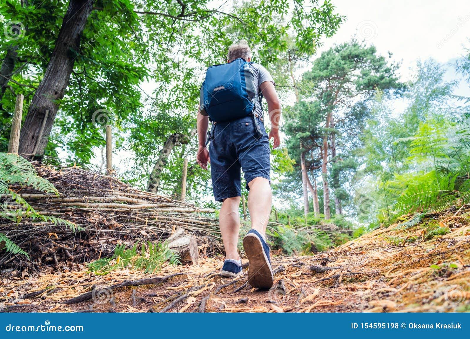 Νέο καυκάσιο άτομο που περπατά με το σακίδιο πλάτης στα ξύλα από την πλάτη Καταδίωξη τουριστών κατώτατης άποψης σε όλη τη θερινή
