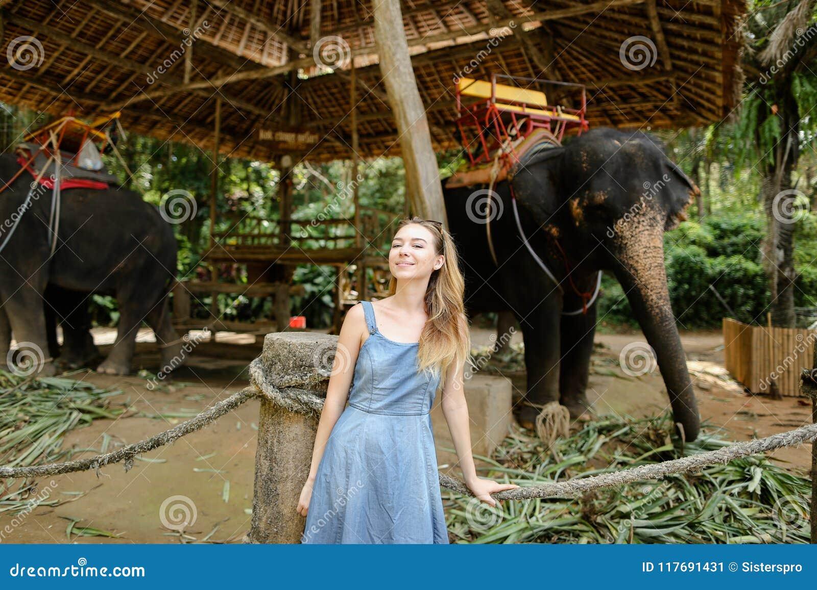 Νέο συμπαθητικό κορίτσι που στέκεται κοντά στους εξημερωμένους και δεμένους ελέφαντες