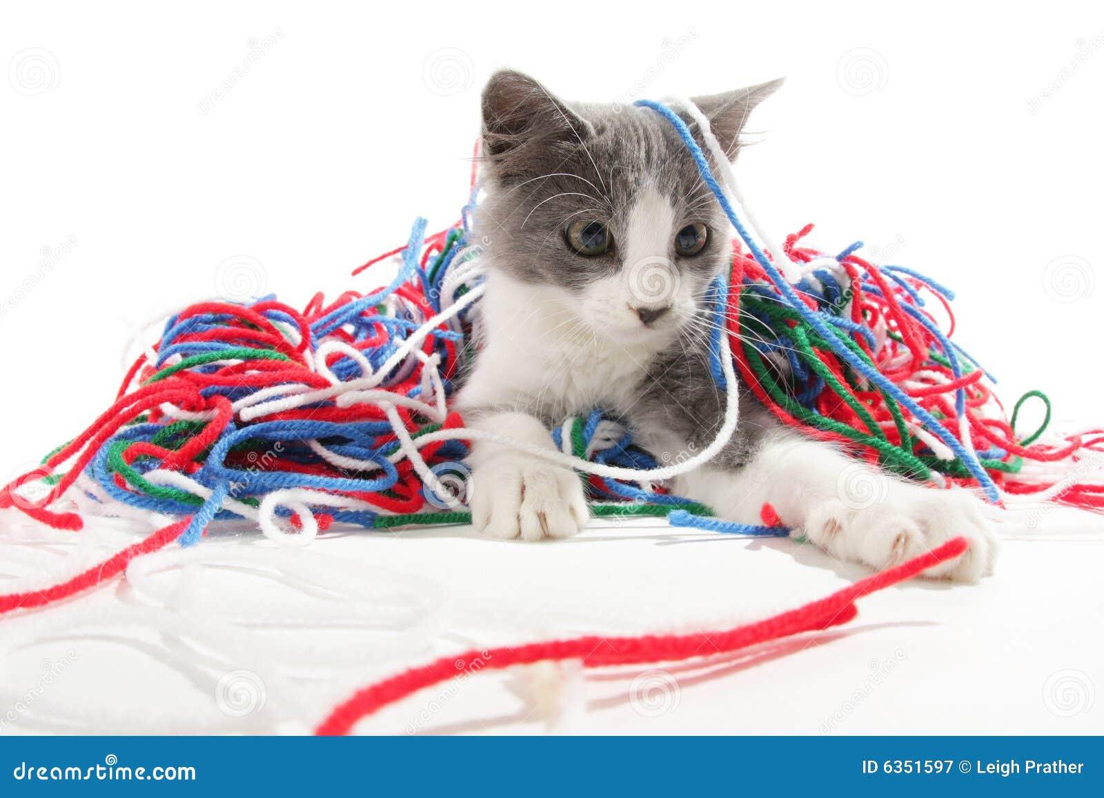 νήμα παιχνιδιού γατακιών
