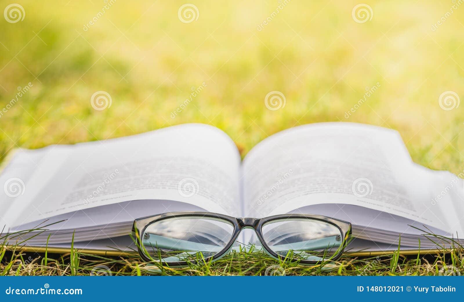 Να διαβάσει υπαίθρια Υπαίθρια αναψυχή που διαβάζει ένα βιβλίο