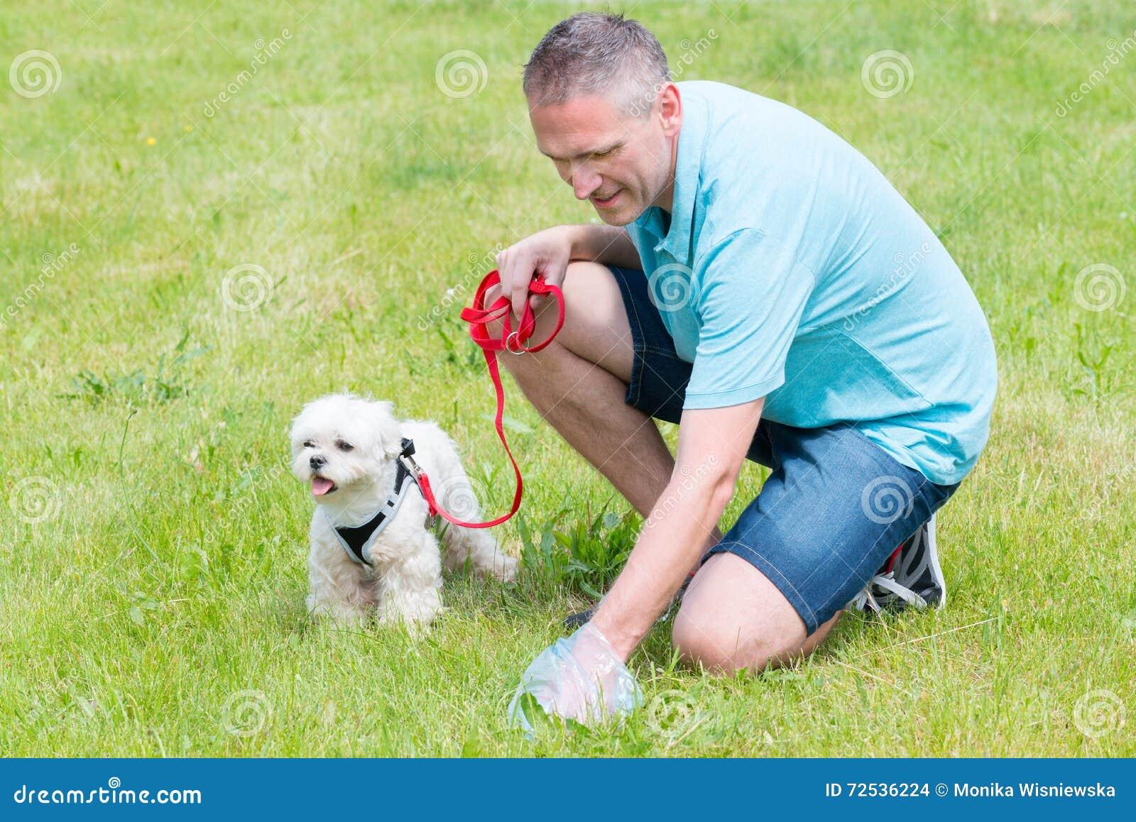 Να πάρει το επίστεγο σκυλιών