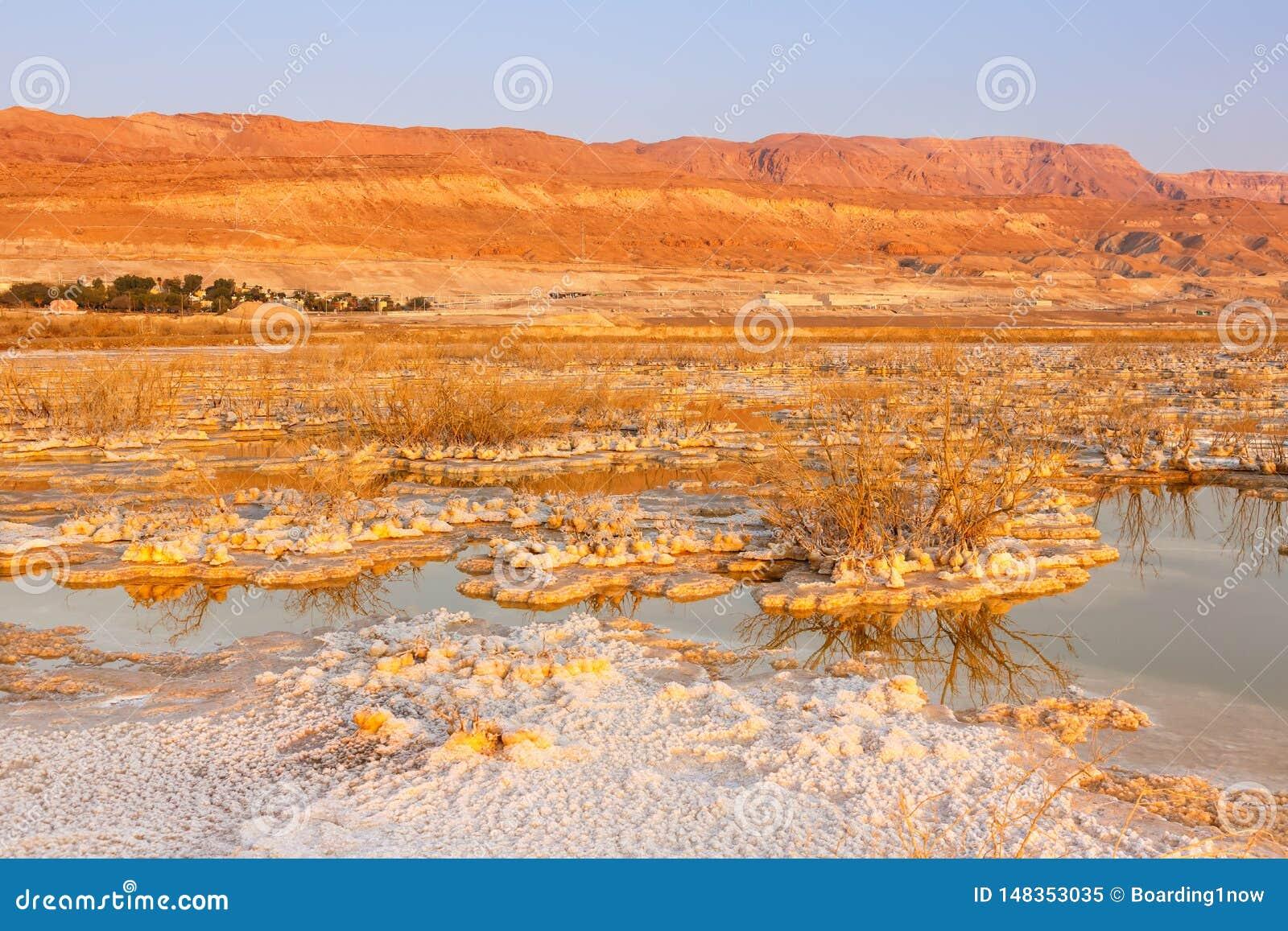 Νεκρή φύση τοπίων πρωινού ανατολής του Ισραήλ θάλασσας