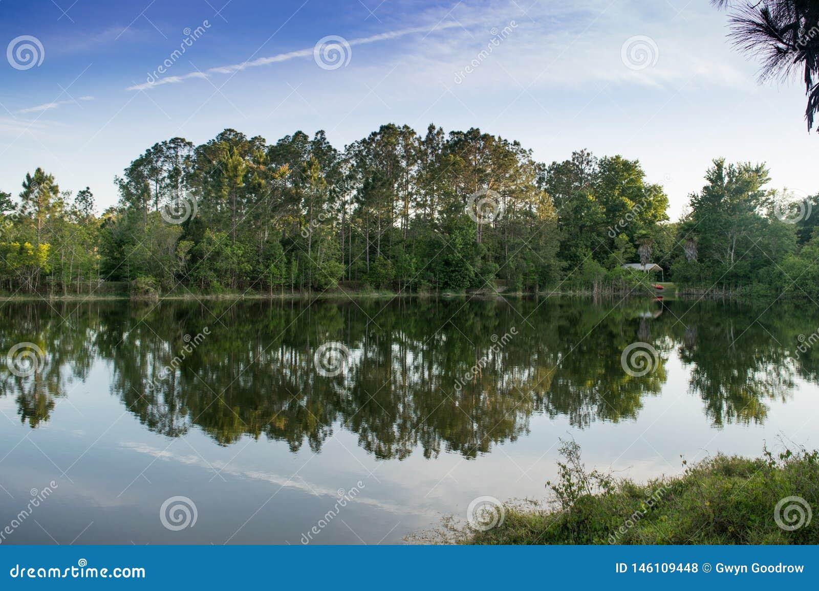 Νερό και δέντρα αντανάκλασης θερινών τοπίων φύσης