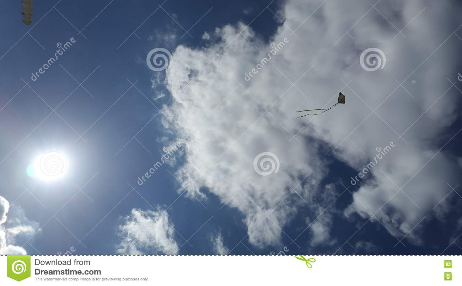 Νεφελώδης ουρανός και ένας ικτίνος