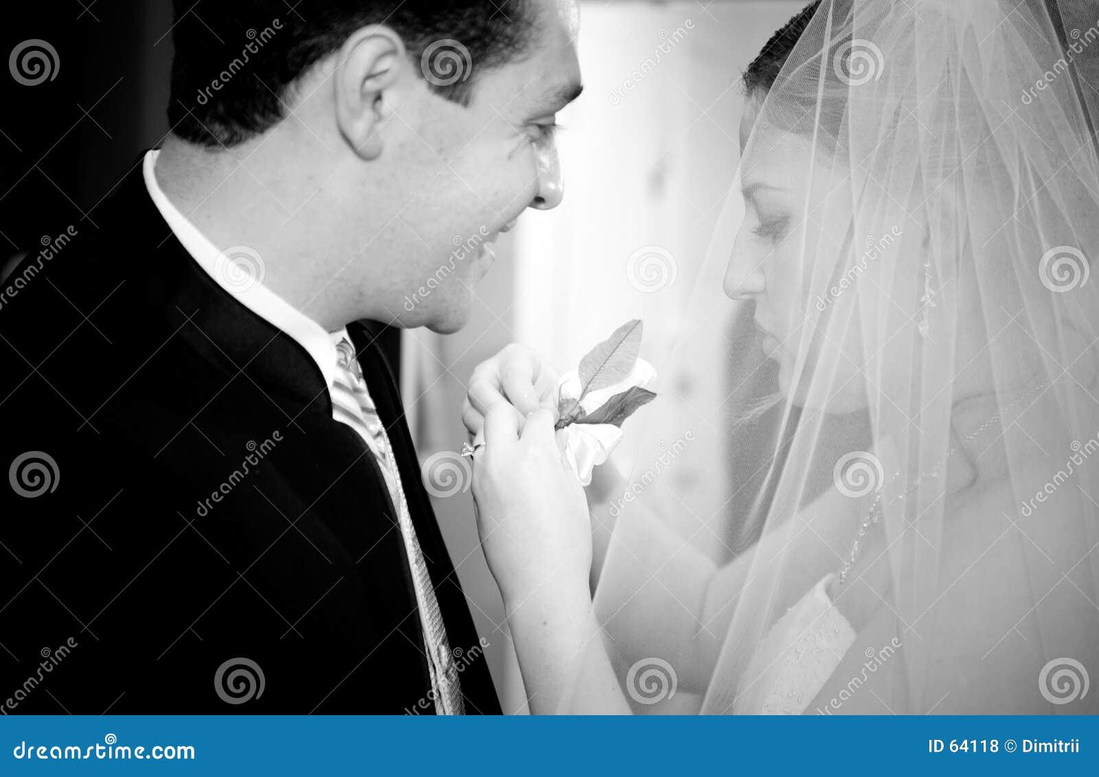 Download νεόνυμφος νυφών στοκ εικόνες. εικόνα από nuptials, έναρξη - 64118