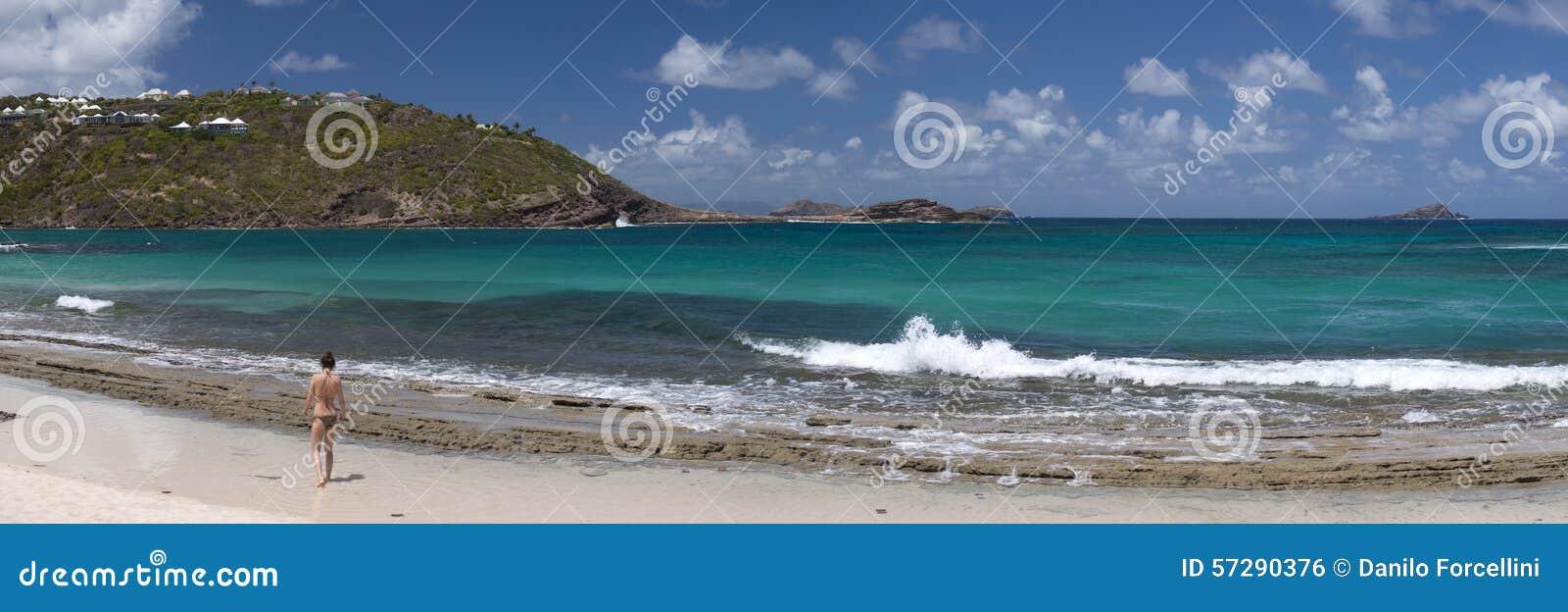 Νησί του ST Barth, καραϊβική θάλασσα