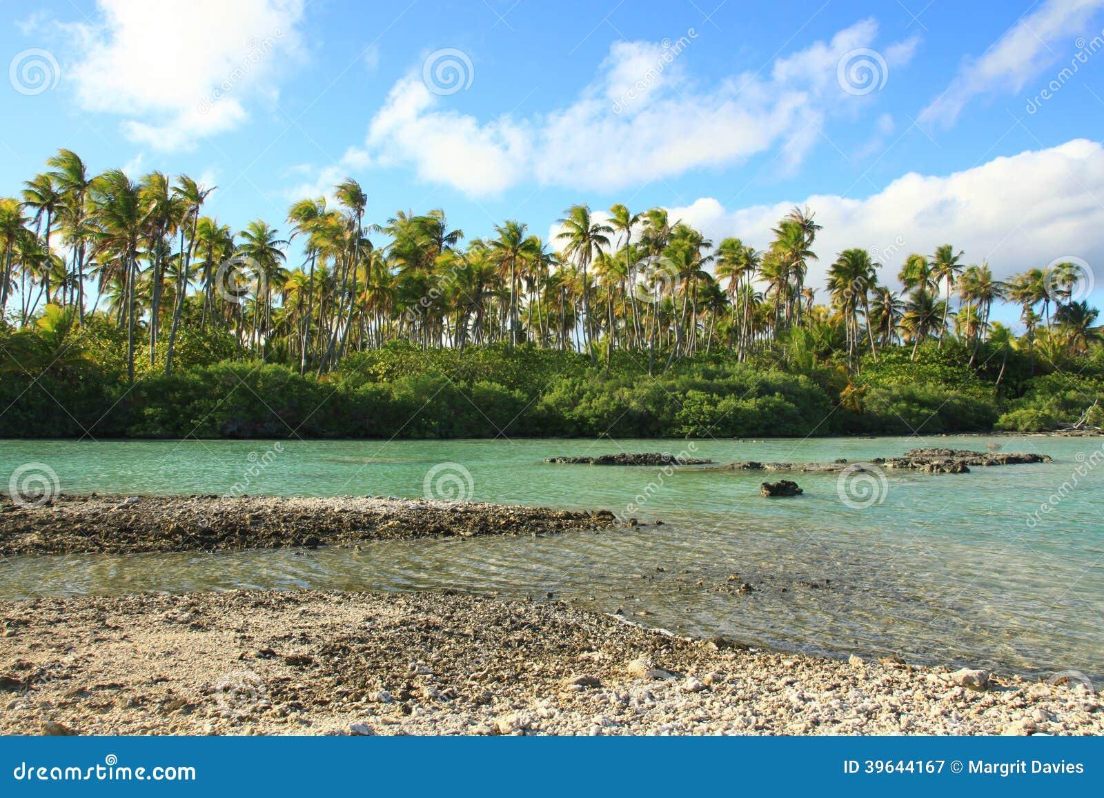 νησί τροπικό