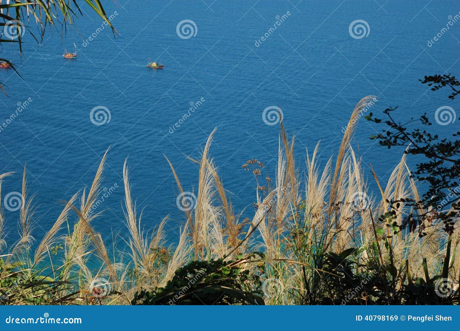 Νησιά ορίου