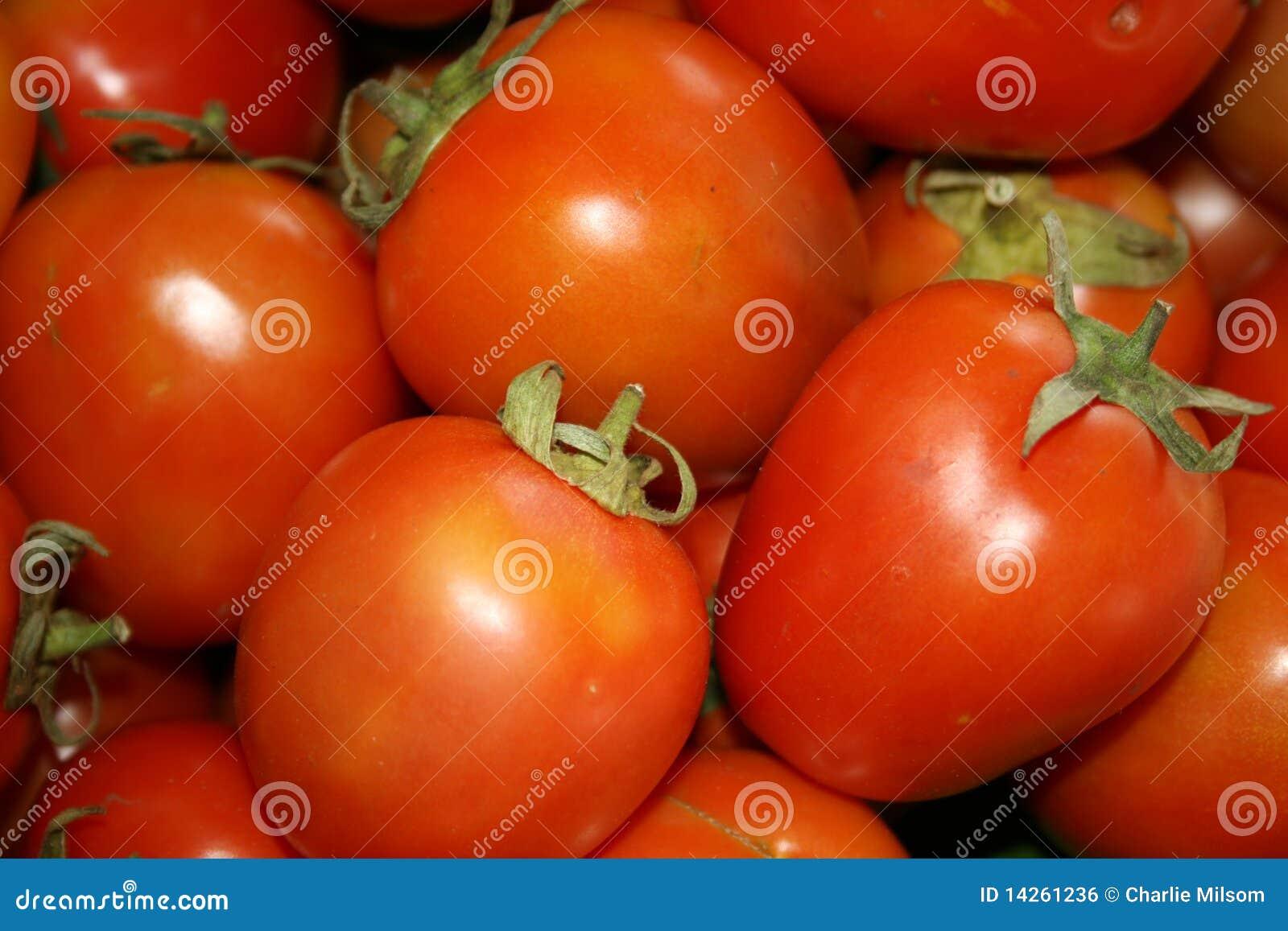 ντομάτες της Ταϊλάνδης